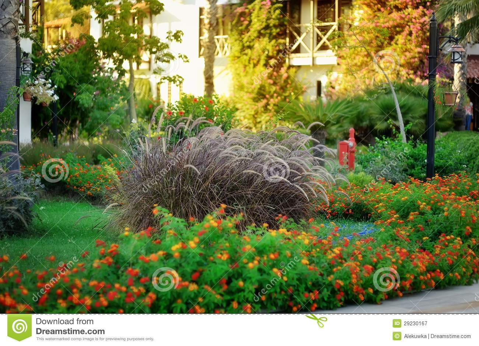 Download Paisagem imagem de stock. Imagem de botanical, naughty - 29230167
