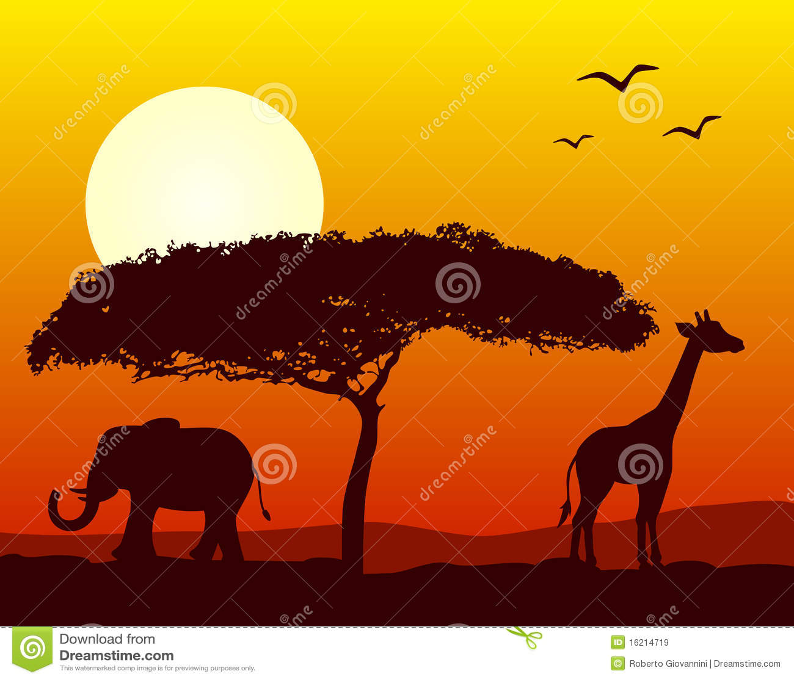 Paisagem africana no por do sol