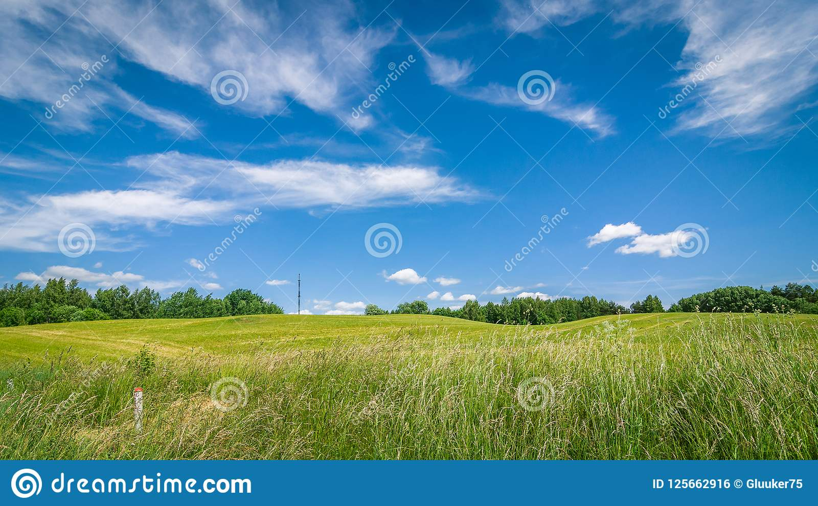 Paisagem agricultural do verão um campo montanhoso sob um céu nebuloso azul