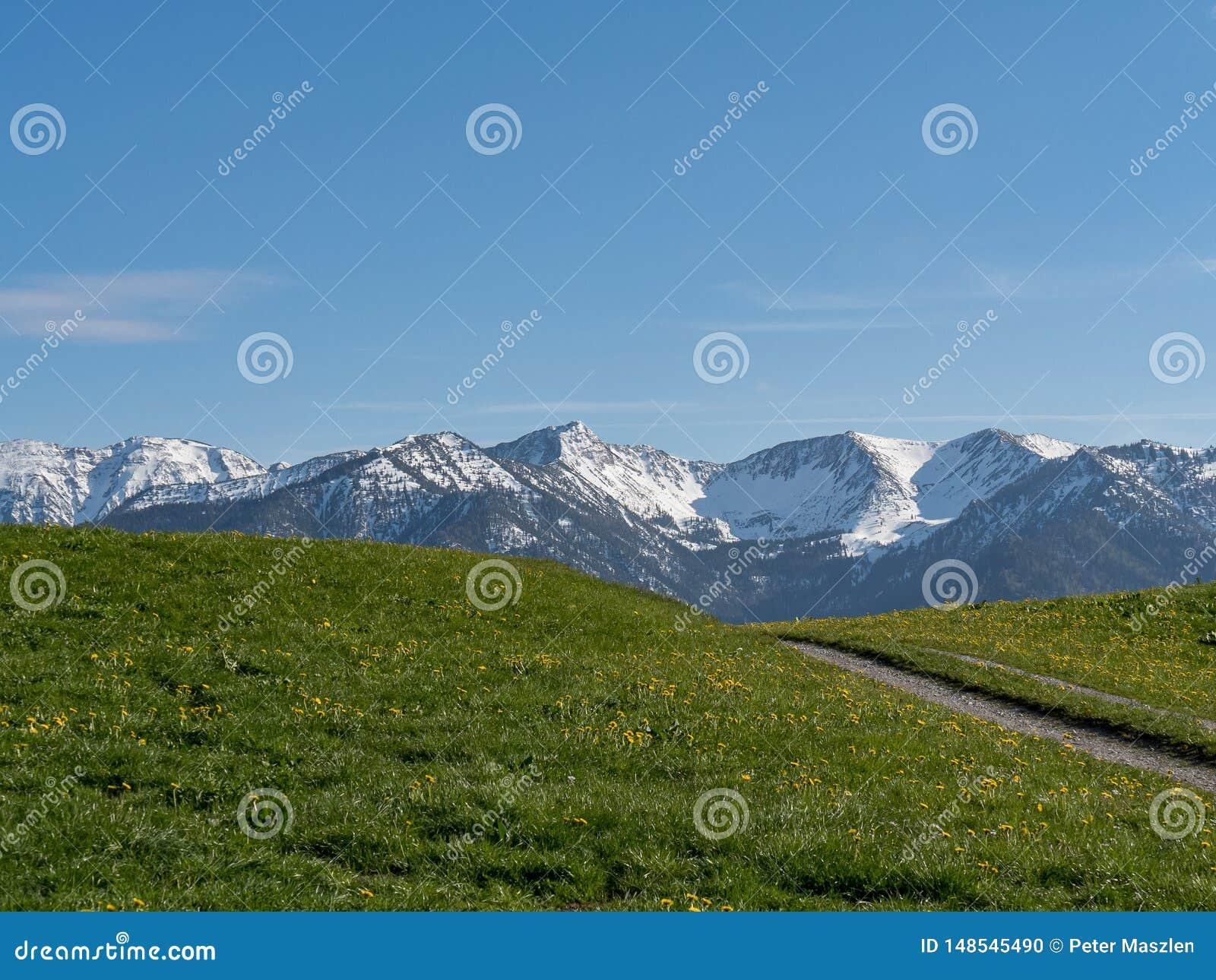 Paisagem alpina bonita com prado e cumes em Baviera