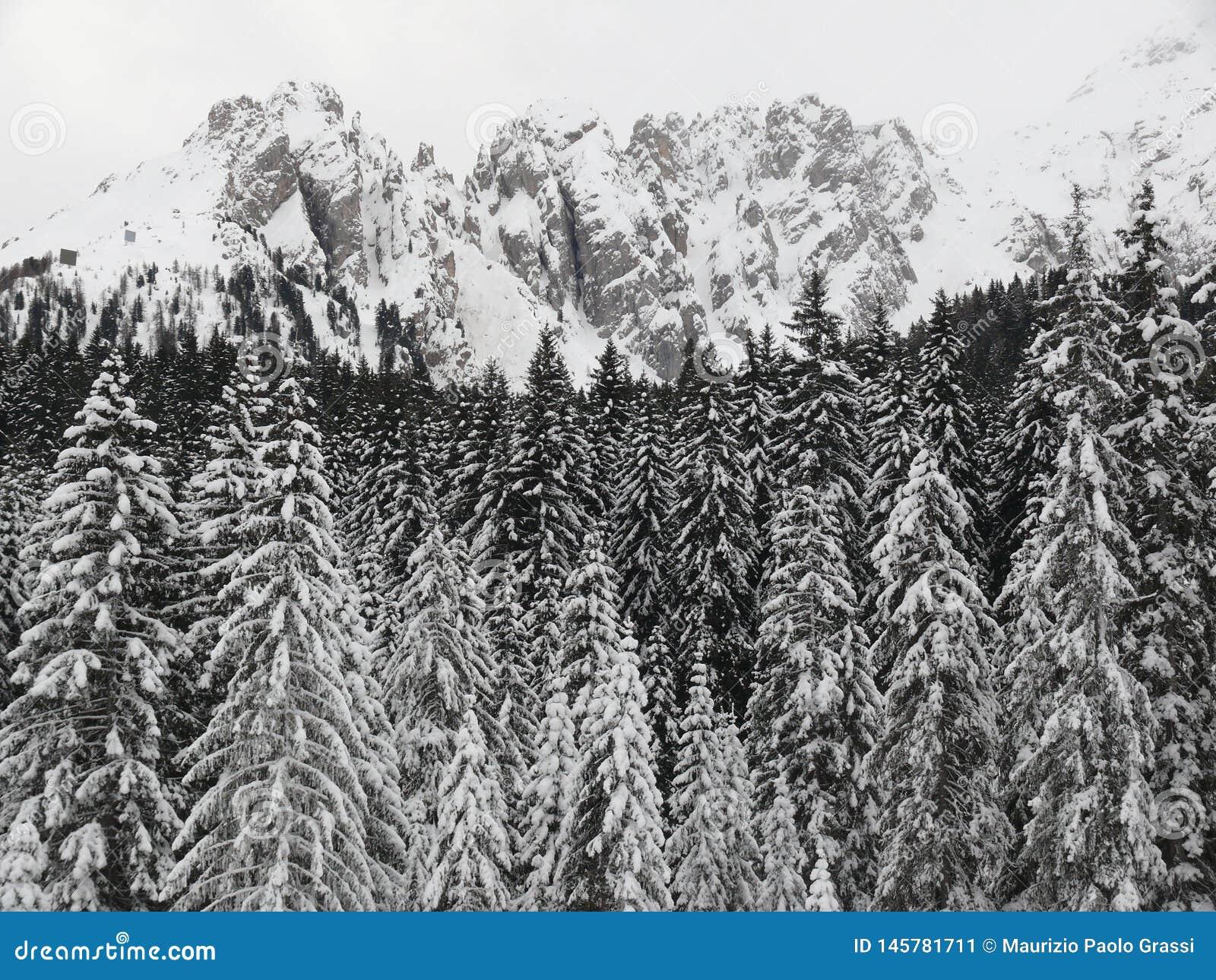 Paisagem alpina das dolomites com neve Trentino