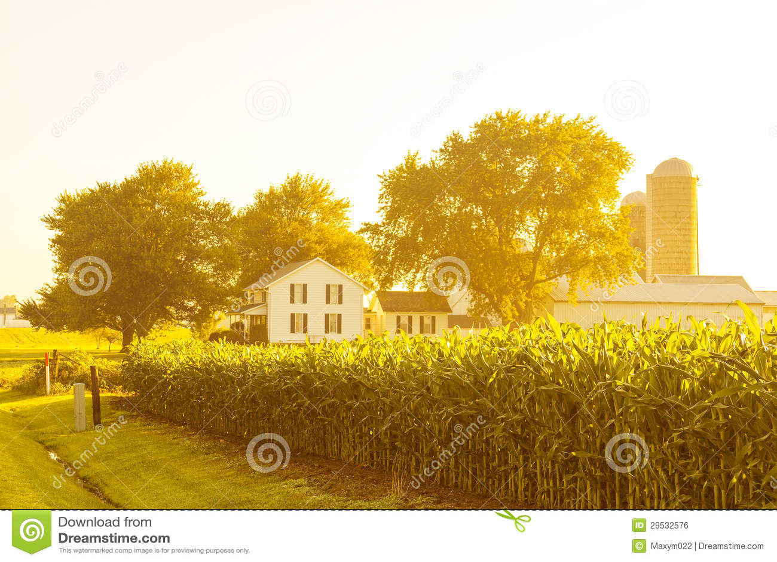 Paisagem americana do campo