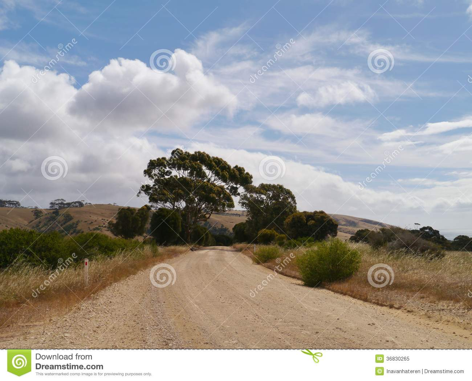 Paisagem australiana com uma trilha