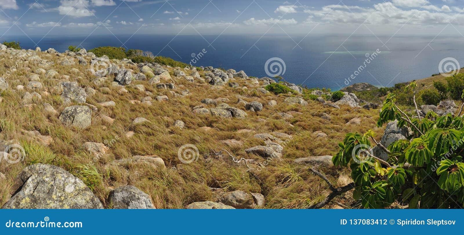 Paisagem australiana Ilha do lagarto, o grande recife de coral, Queensland, Austrália