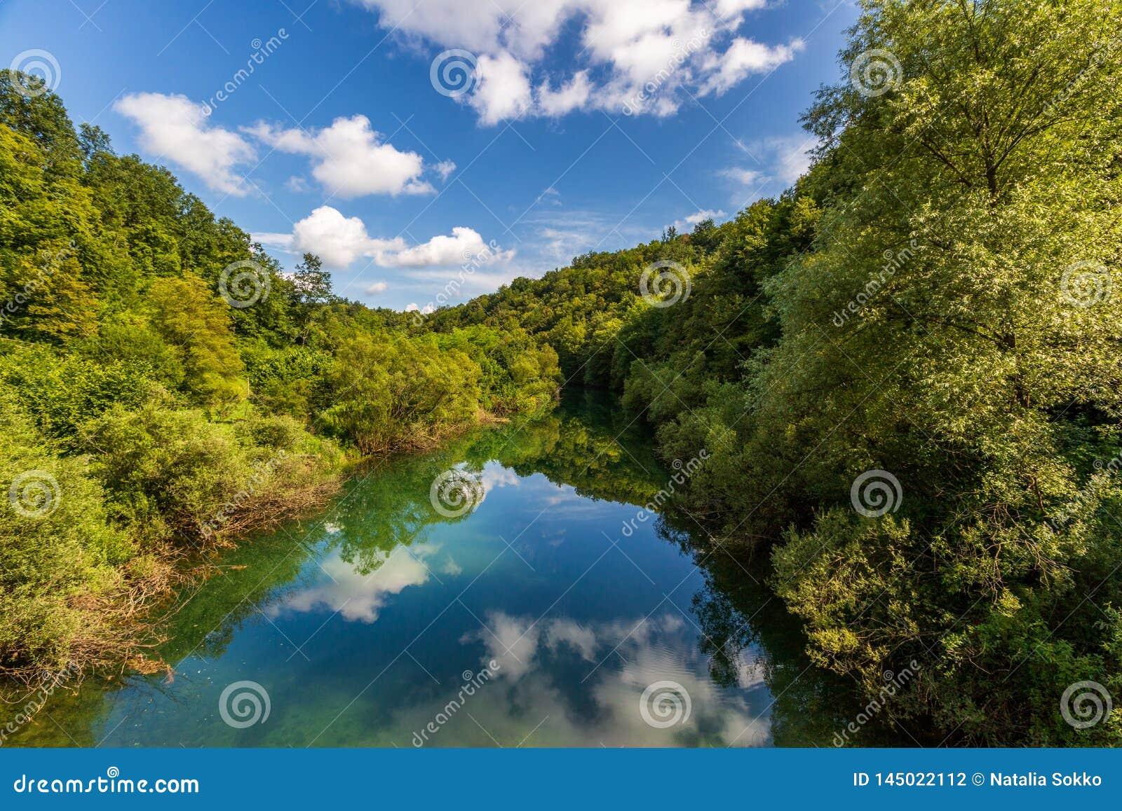 Paisagem bonita com rio, floresta e reflexão