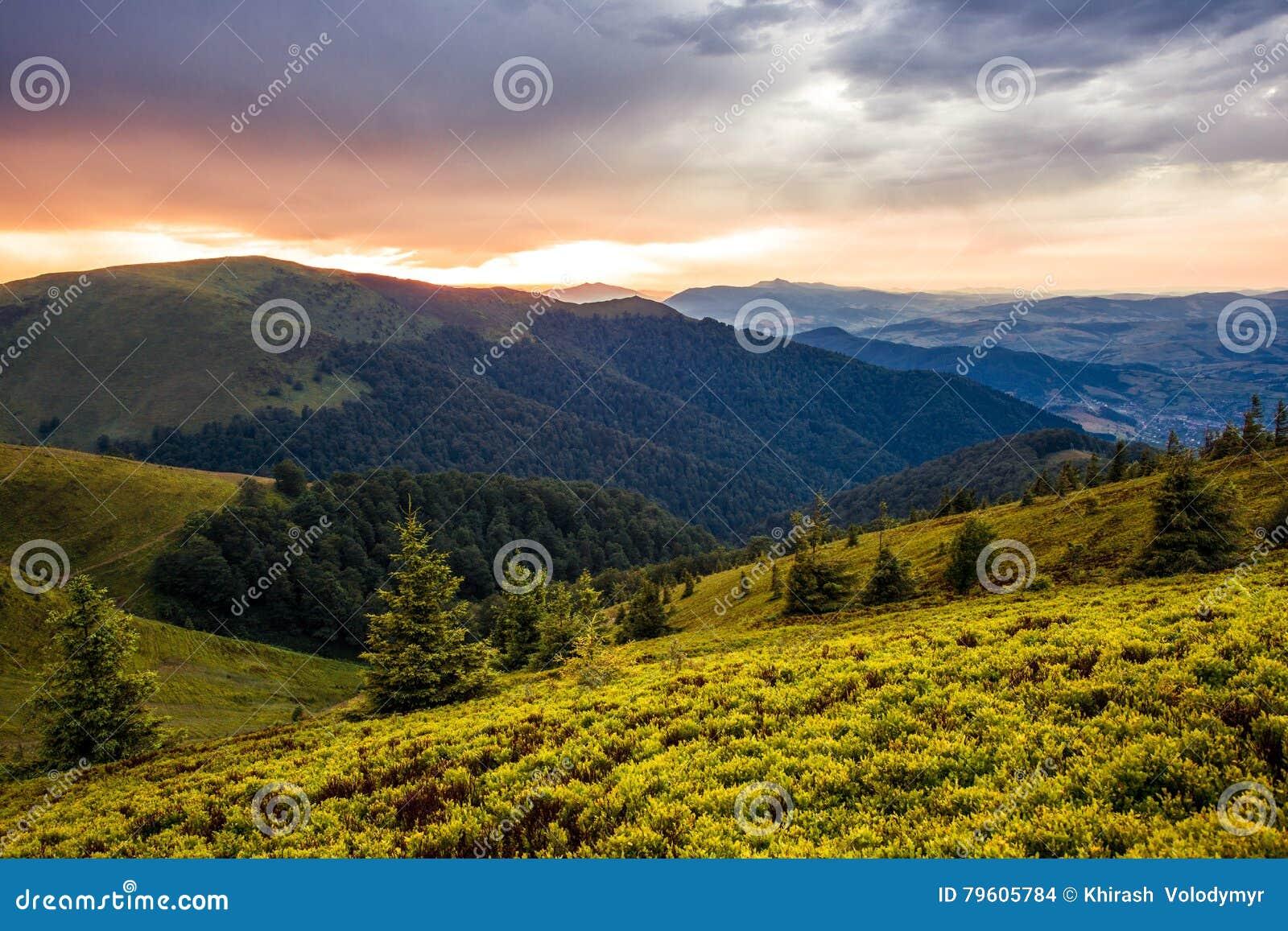 Paisagem bonita do nascer do sol de Carpathians do verão