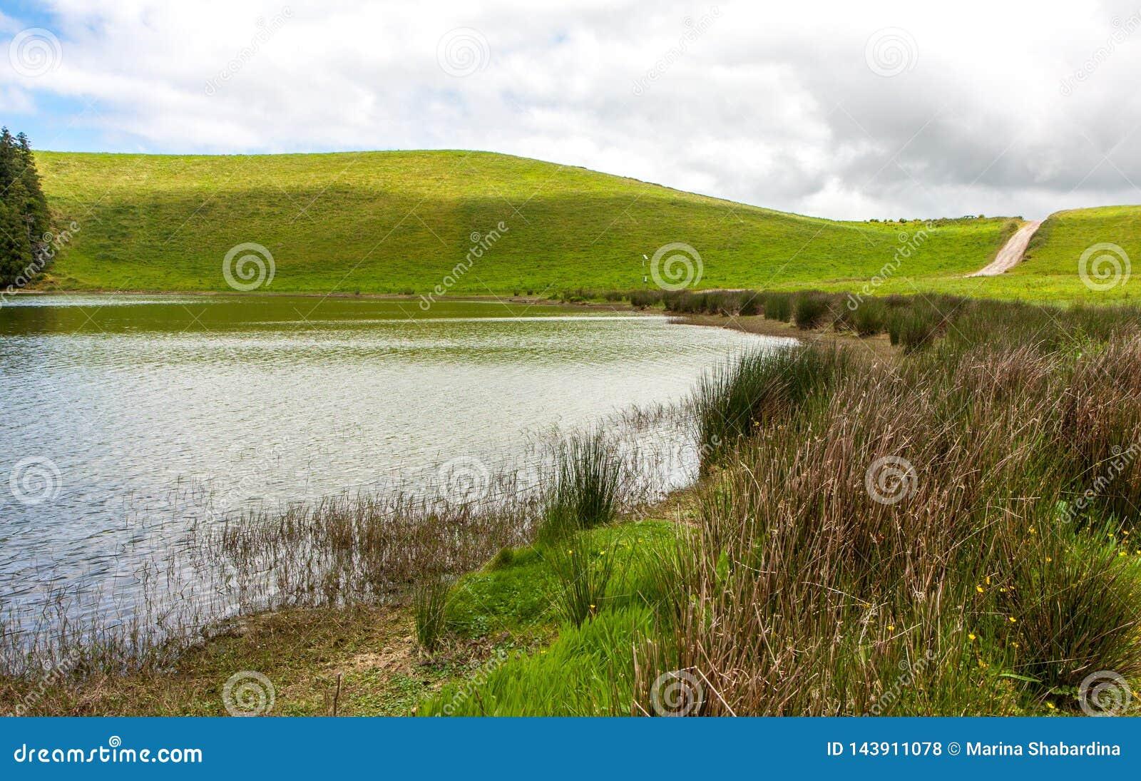 Paisagem bonita em um dia nebuloso ensolarado, com um lago, uma estrada, uns montes e umas plantas