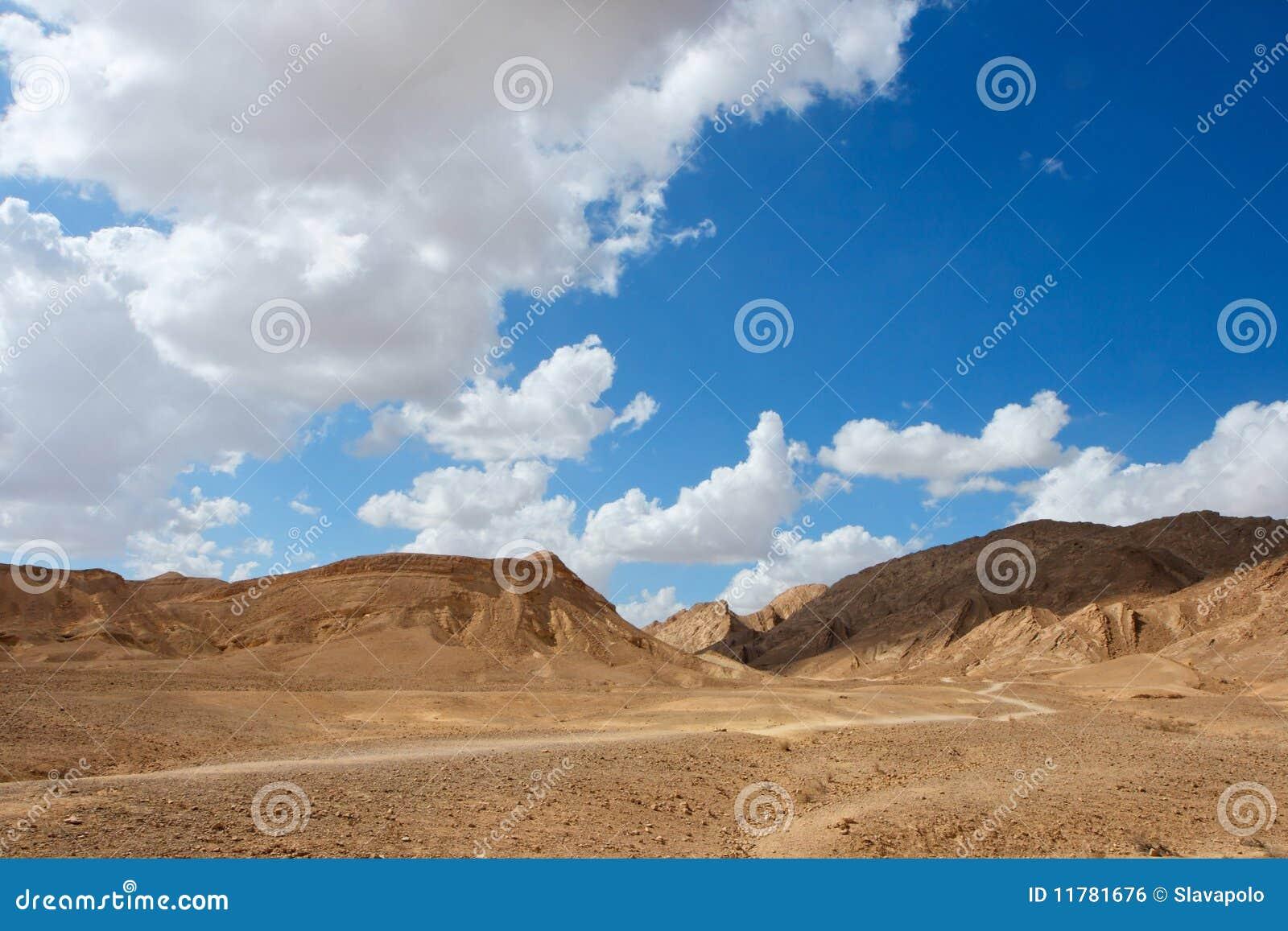 Paisagem cénico do deserto