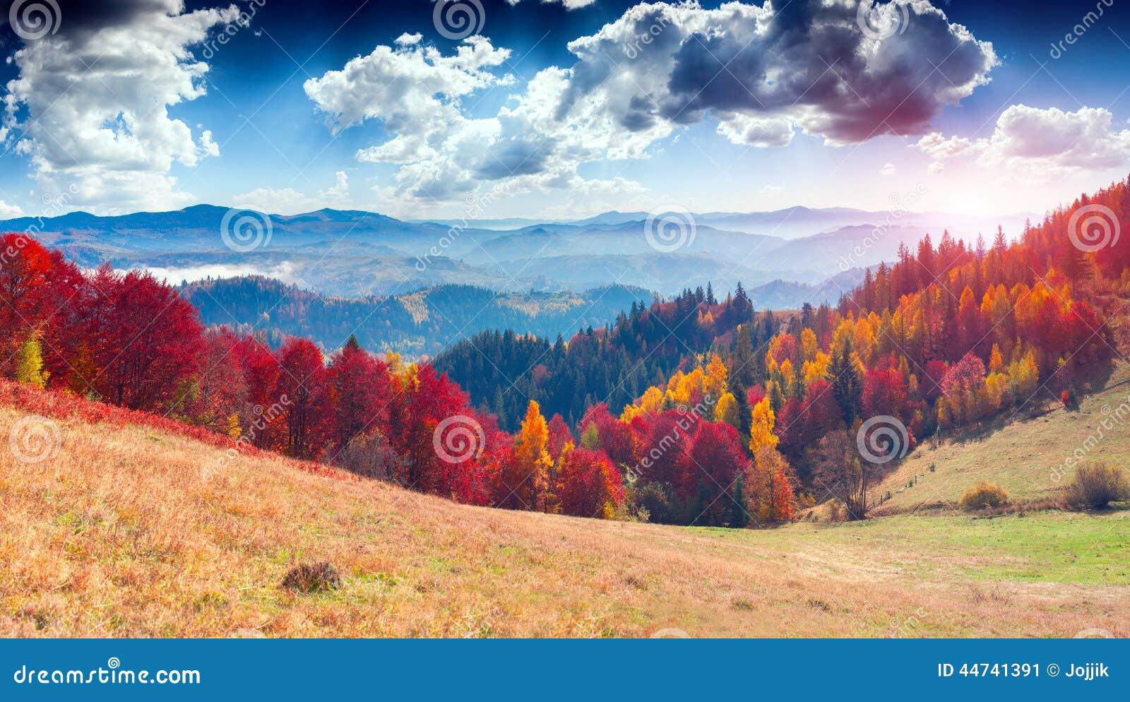 Paisagem colorida do outono na aldeia da montanha Manhã nevoenta