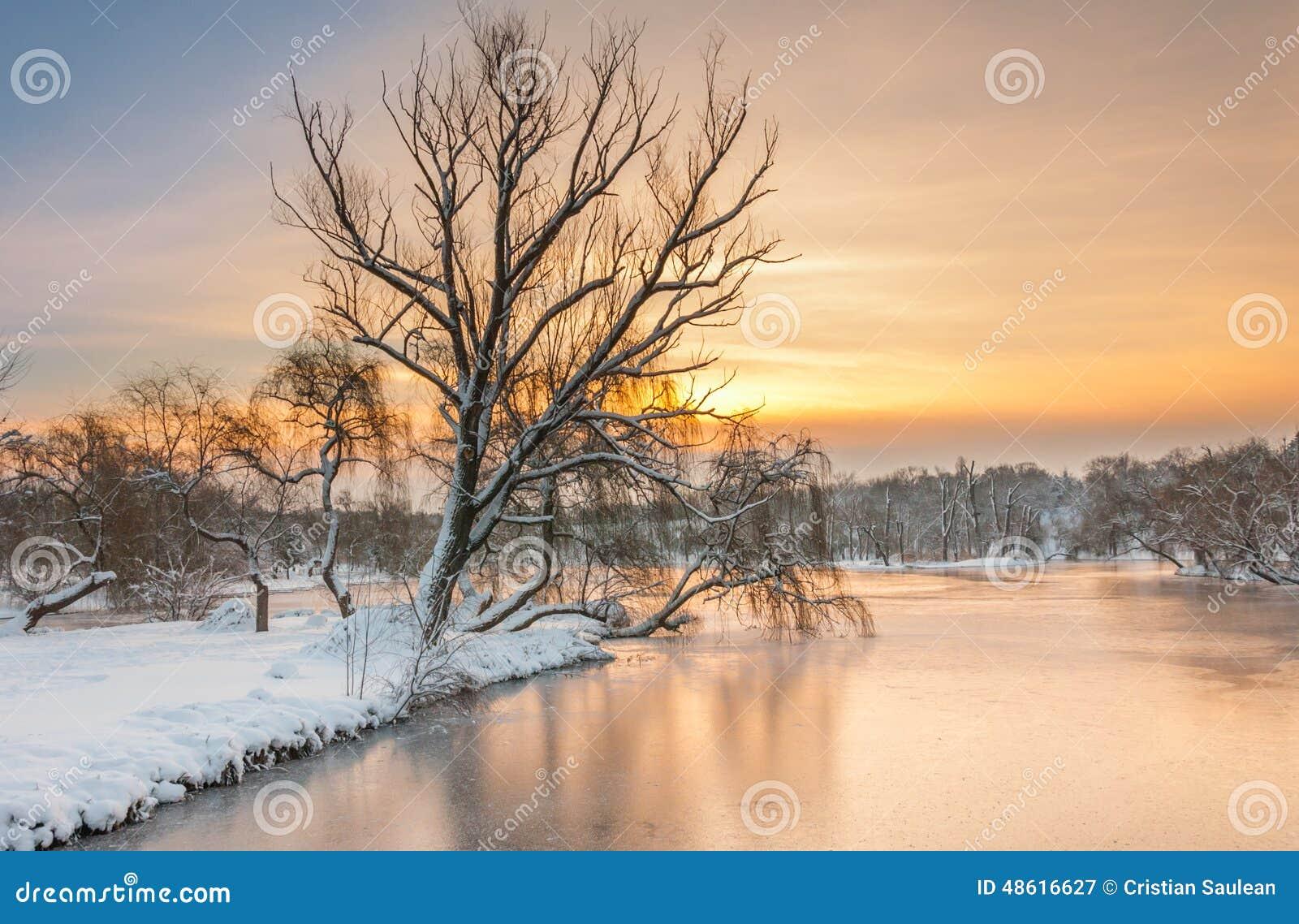 Paisagem colorida no nascer do sol do inverno no parque