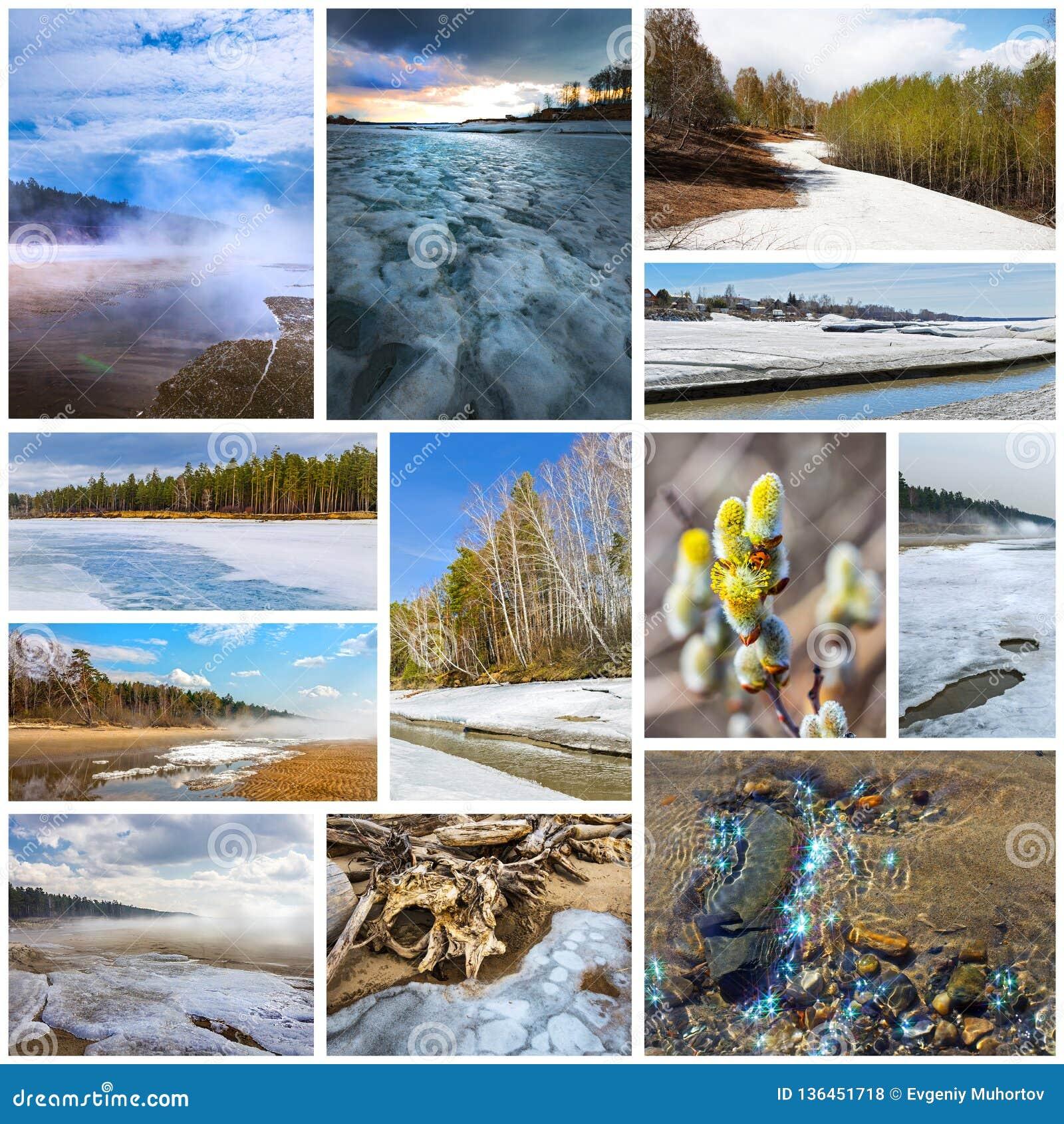 Paisagem da Colagem-mola Região de Sibéria ocidental, Novosibirsk, Rússia