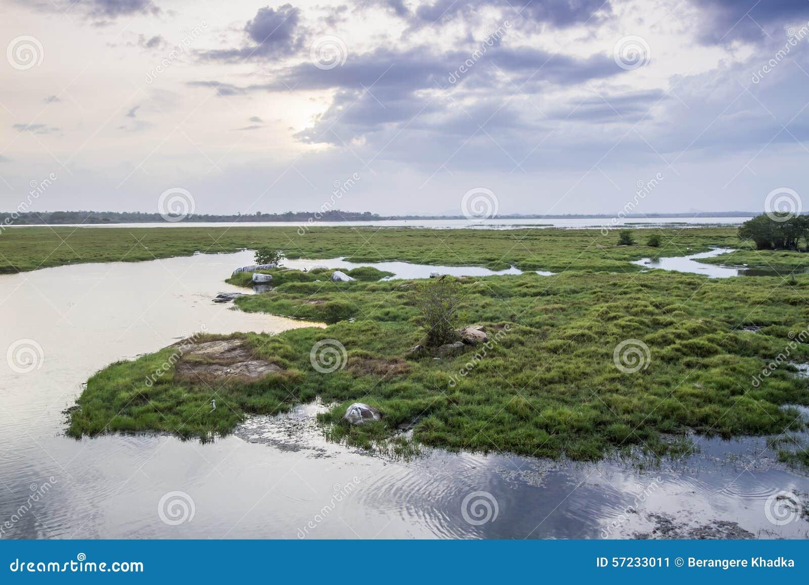 Paisagem da lagoa da baía de Arugam, Sri Lanka