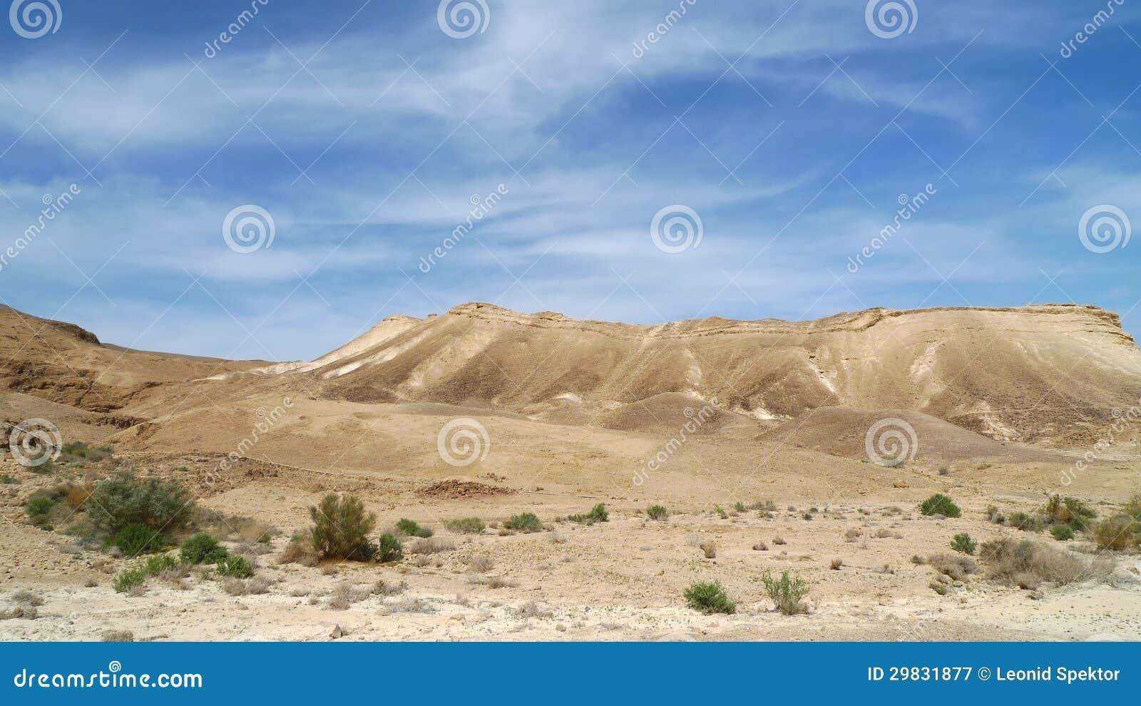 Mola no deserto de Judea.
