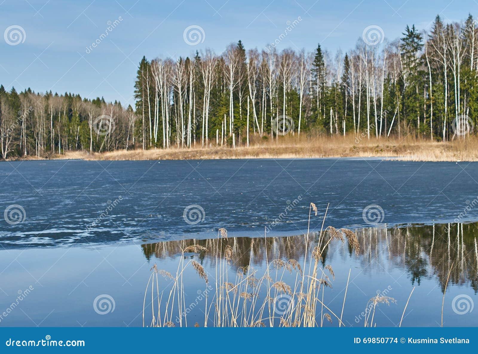 Paisagem da mola no reservatório na região de Kaluga em Rússia