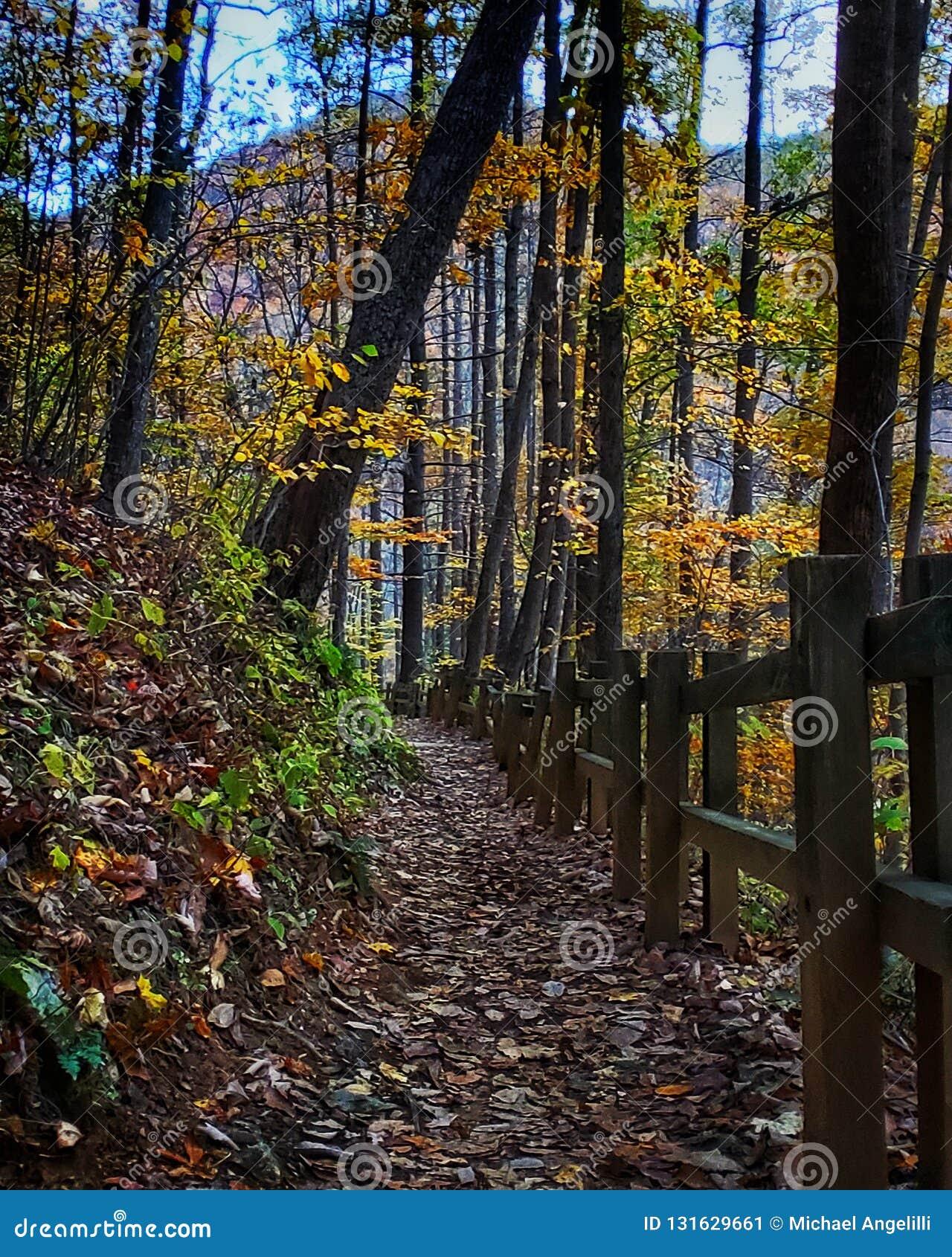 Paisagem da montanha do outono ao longo de um trajeto de caminhada com cerca de madeira