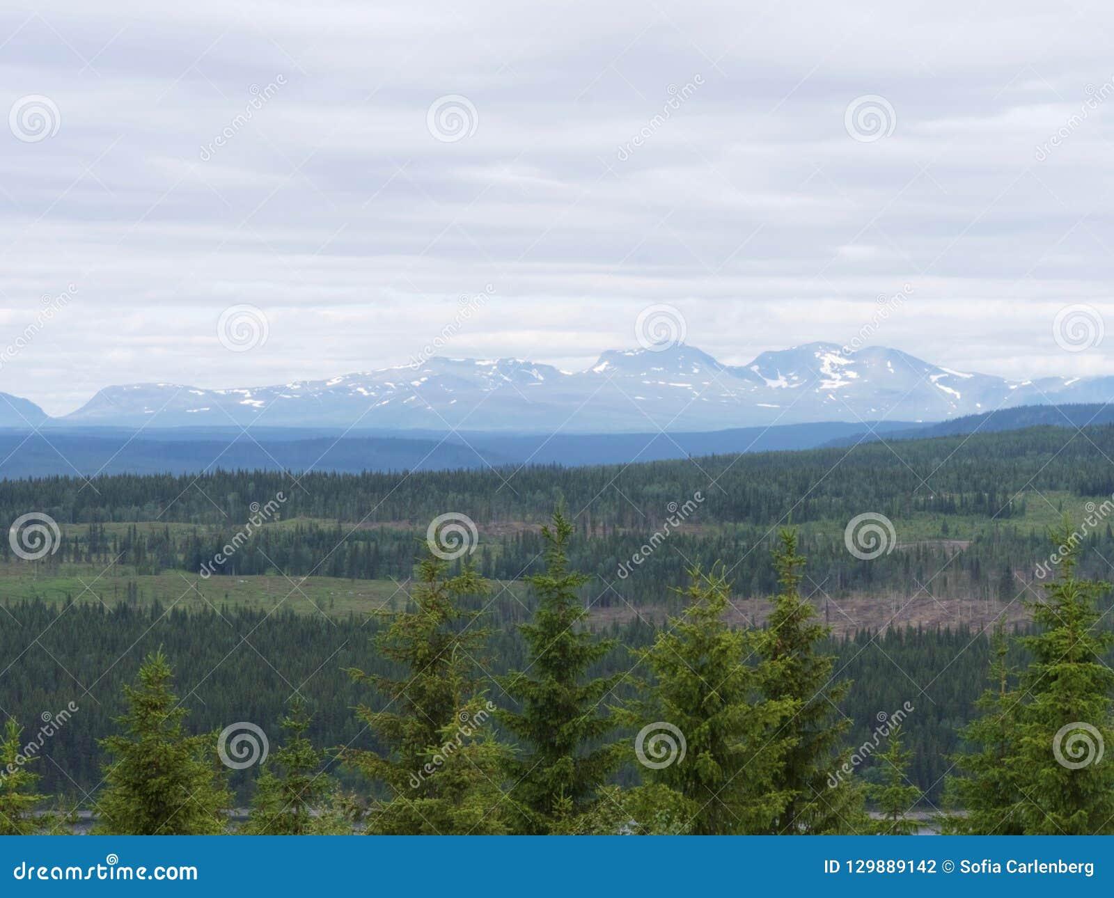Paisagem da montanha na Suécia norte