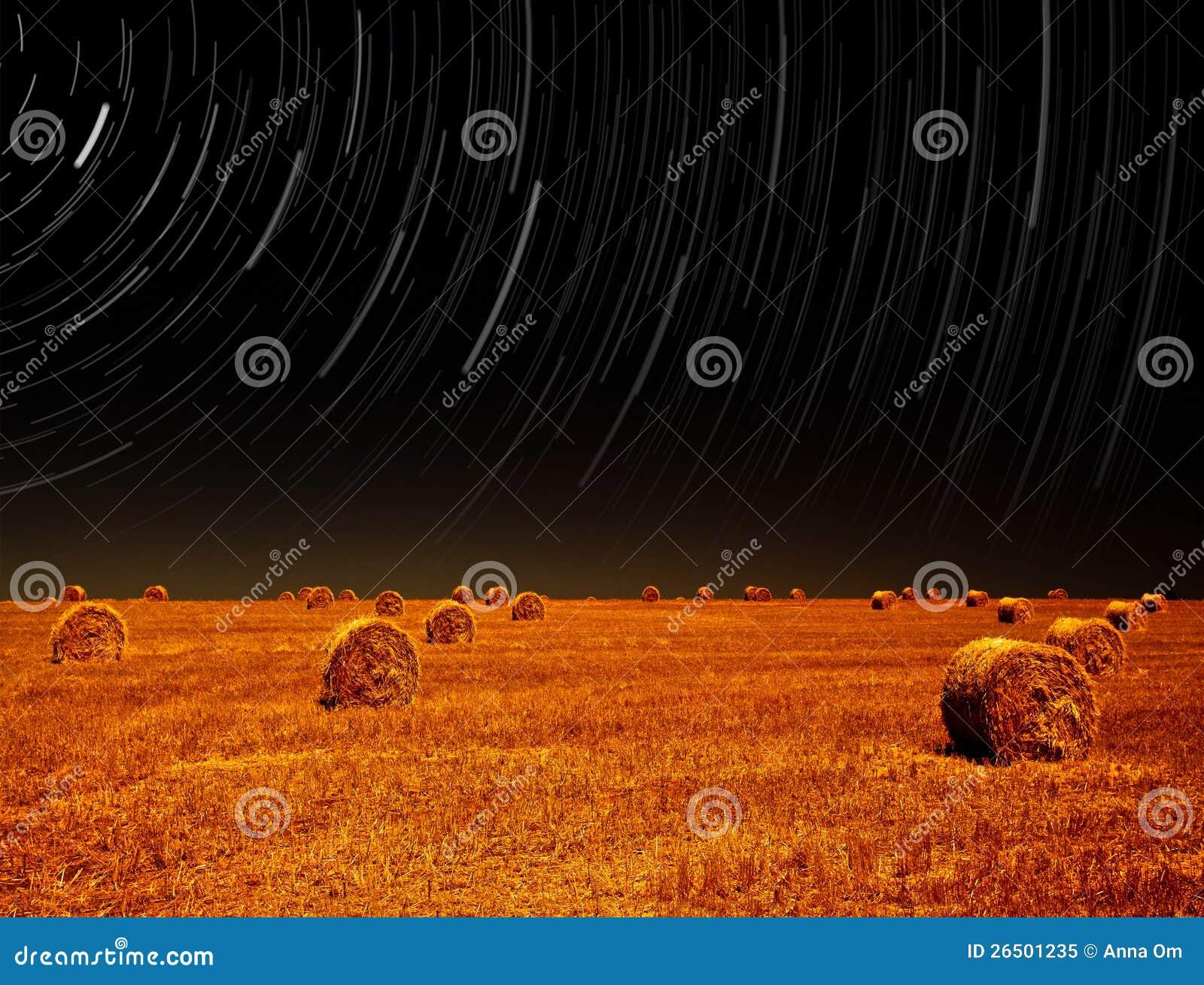 Paisagem da noite do campo de exploração agrícola