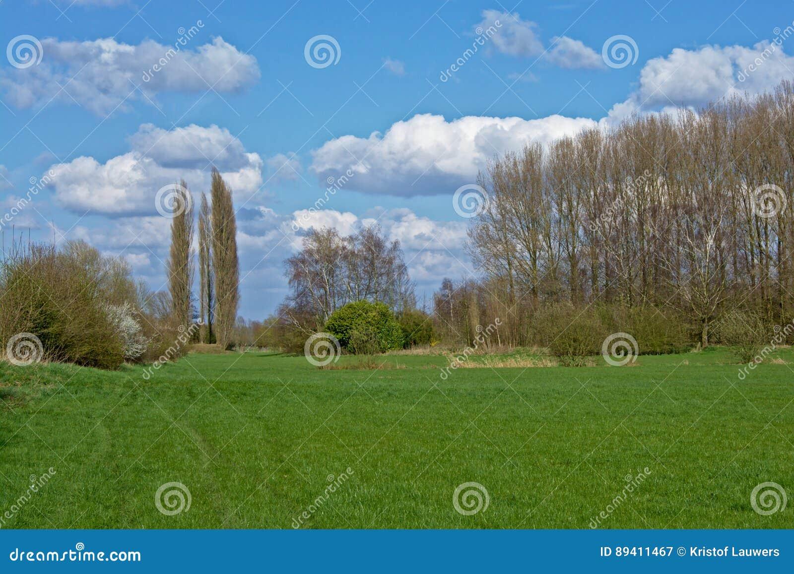 Paisagem da reserva natural do ` de Spanjaardmeersen do `, Flanders de Marshaldn