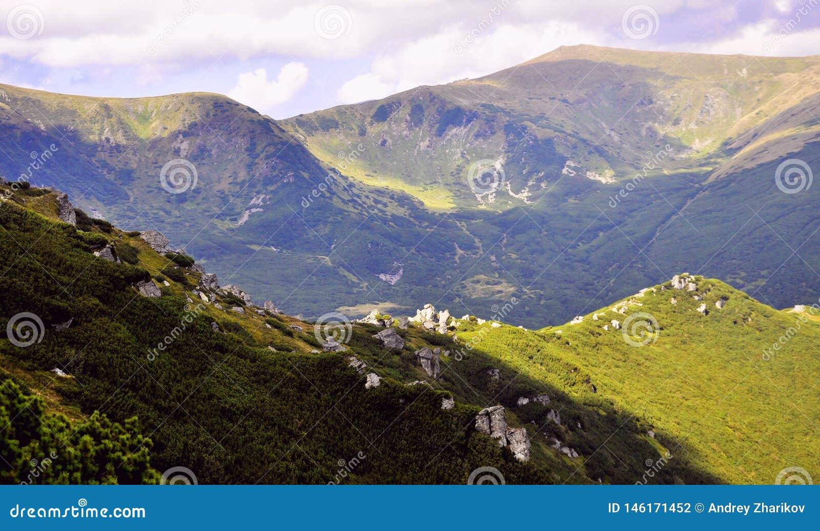 Paisagem de montanhas verdes