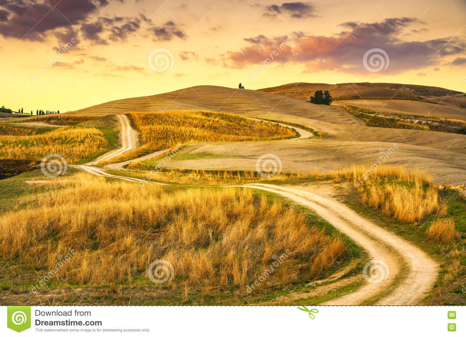 Paisagem de Toscânia, estrada rural e campo verde Volterra Italy