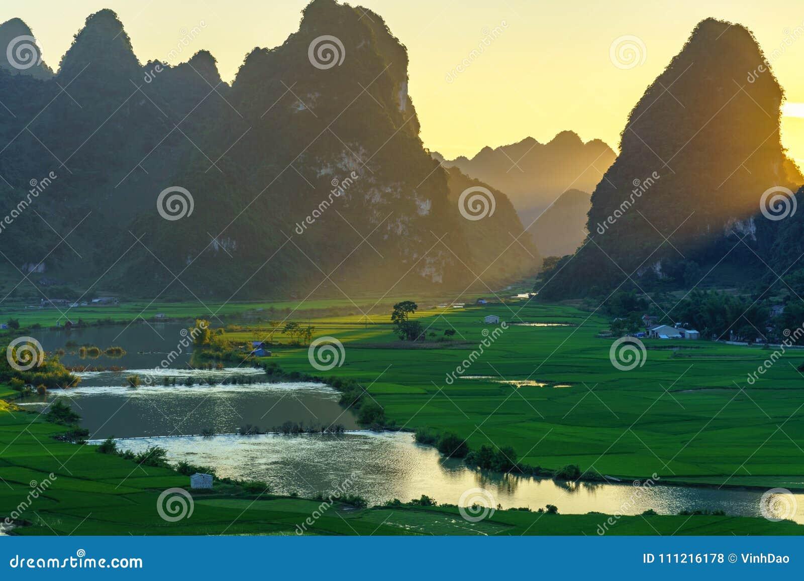 Paisagem de Vietname com campo do arroz, rio, montanha e as baixas nuvens no amanhecer em Trung Khanh, Cao Bang, Vietname