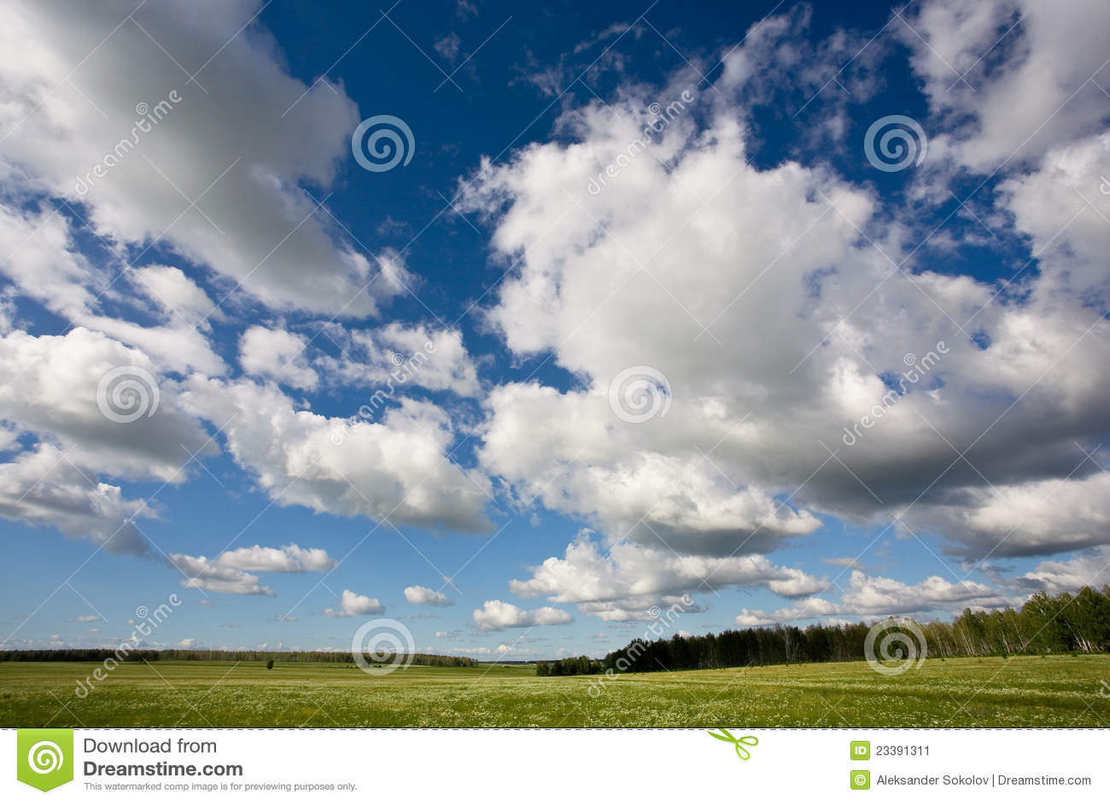 Paisagem do campo com o céu nebuloso azul