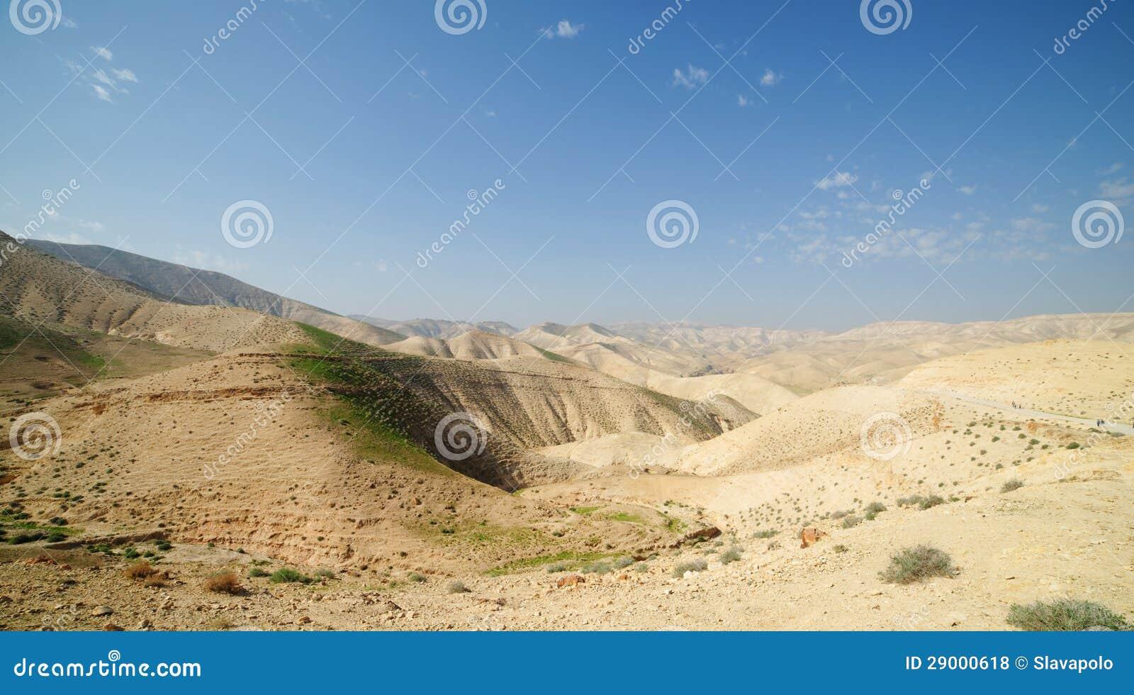 Paisagem do deserto na mola