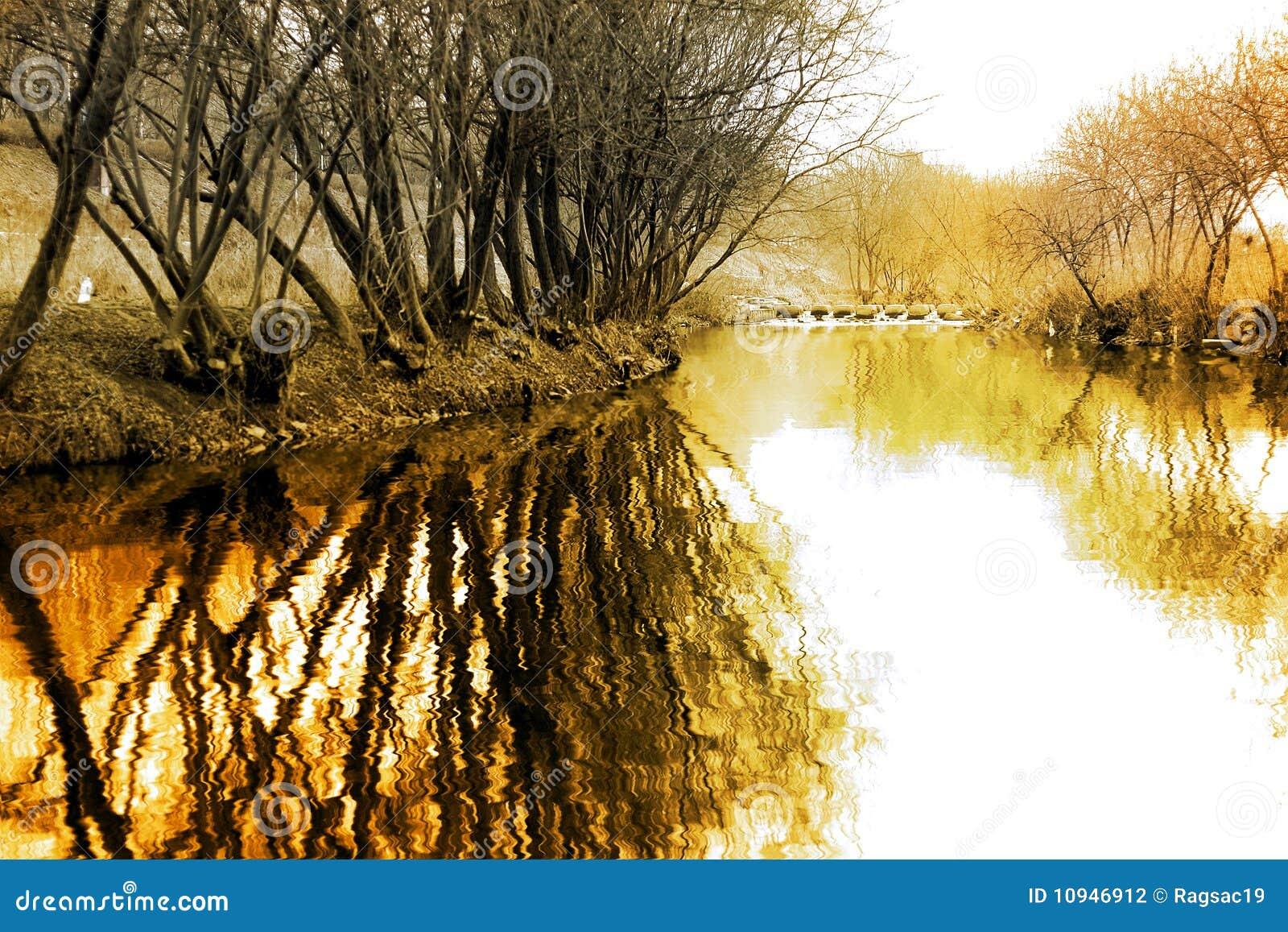 Paisagem do inverno com reflexão