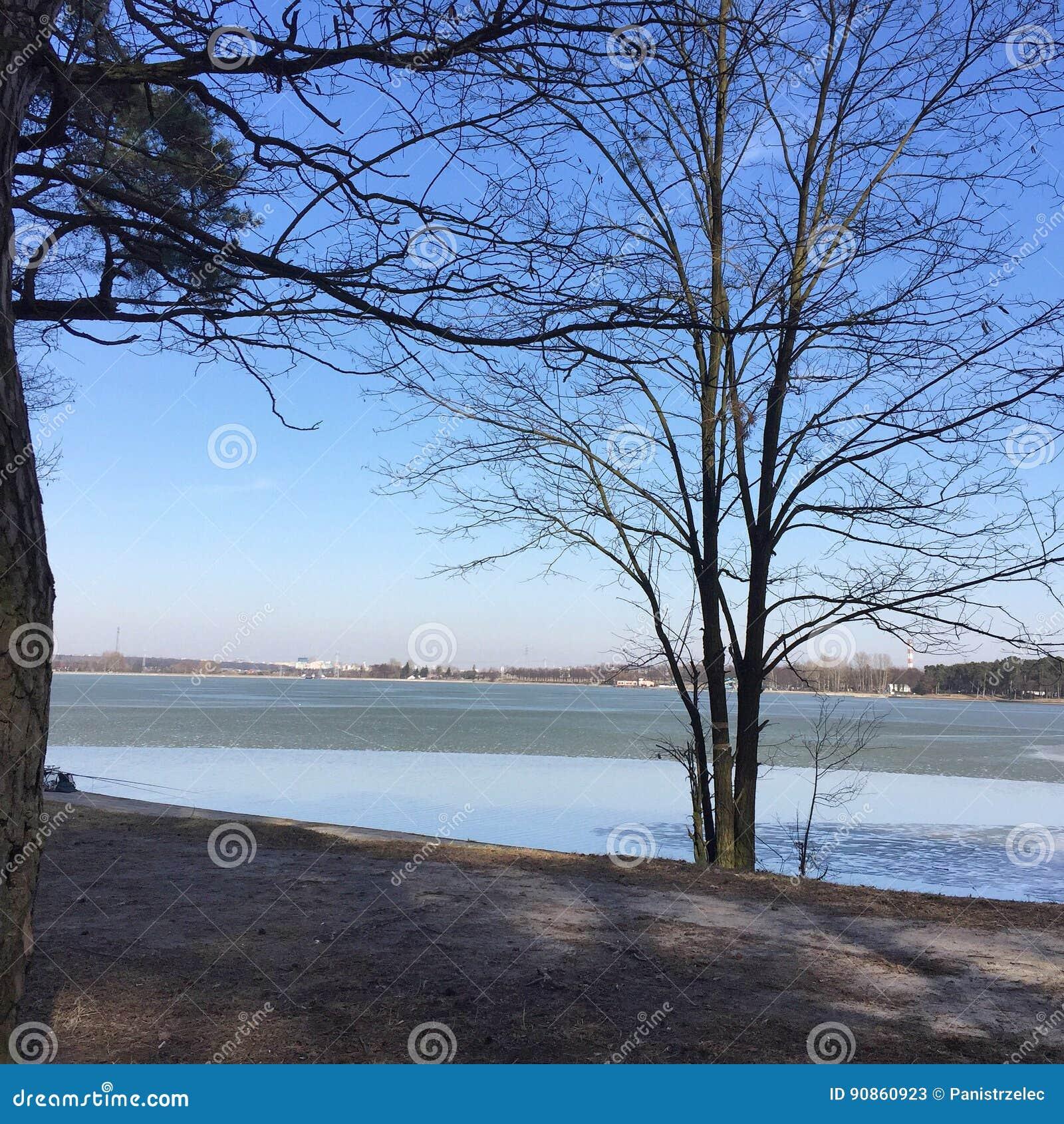 Paisagem do inverno com um lago