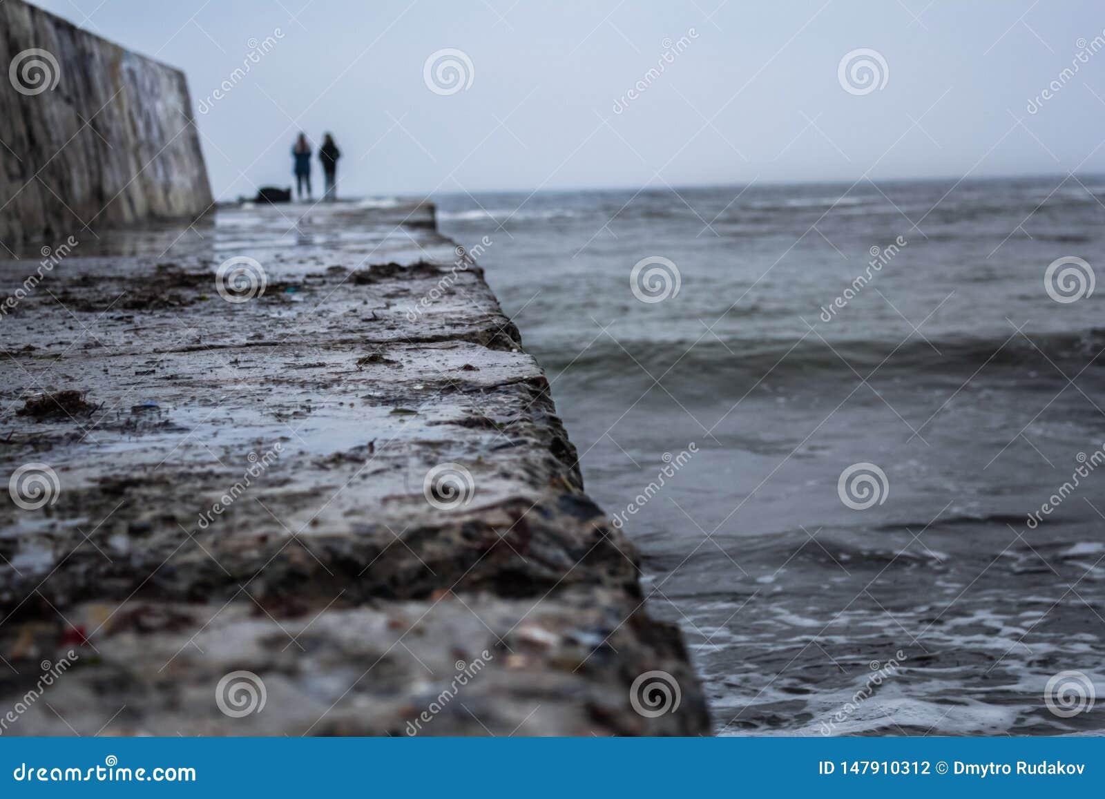 Paisagem do inverno, mar frio
