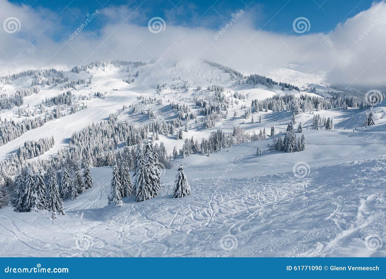 Paisagem do inverno nas montanhas com neve e as árvores cobertos de neve
