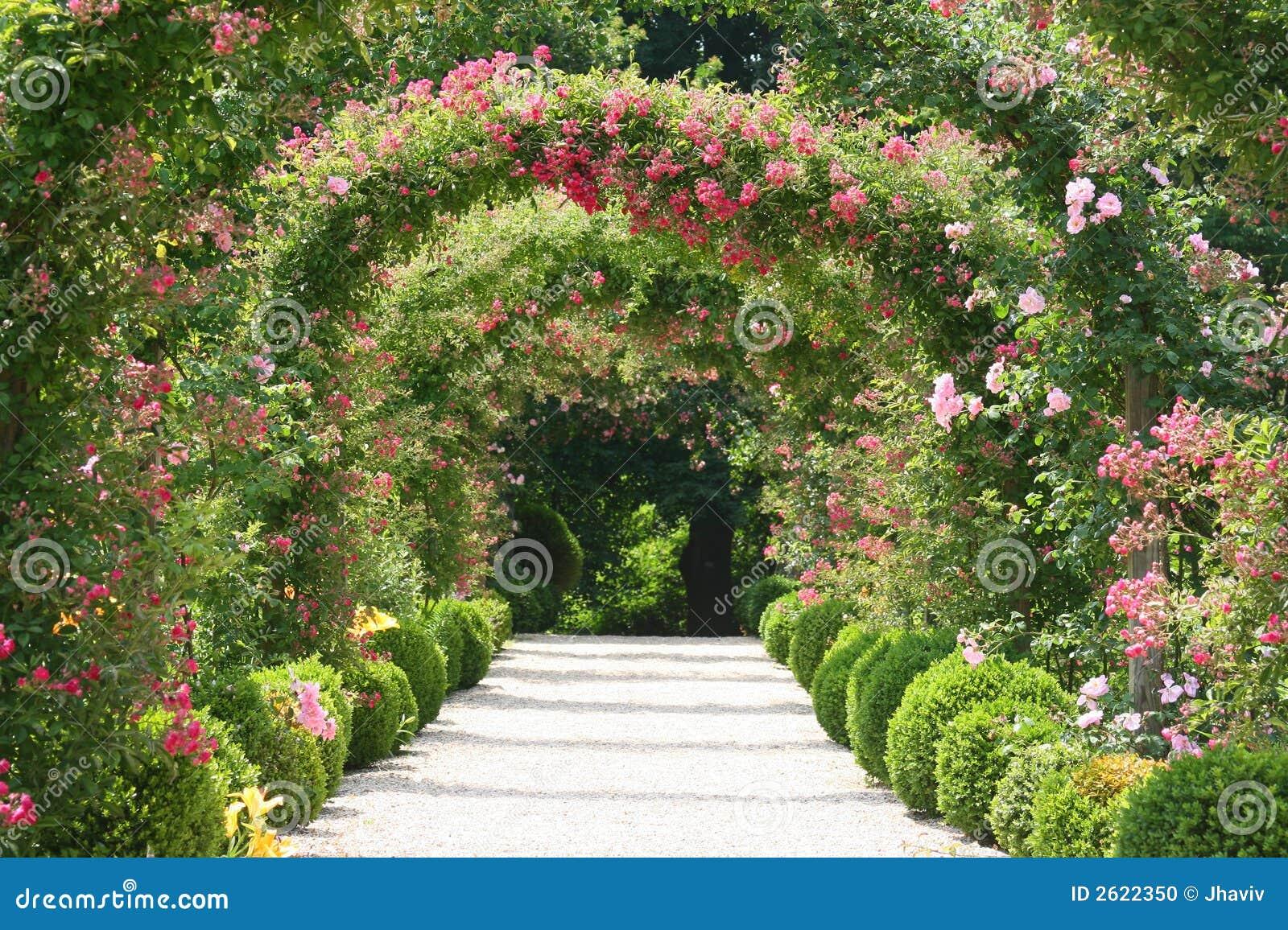 Paisagem Do Jardim De Rosas Foto de Stock  Imagem 2622350