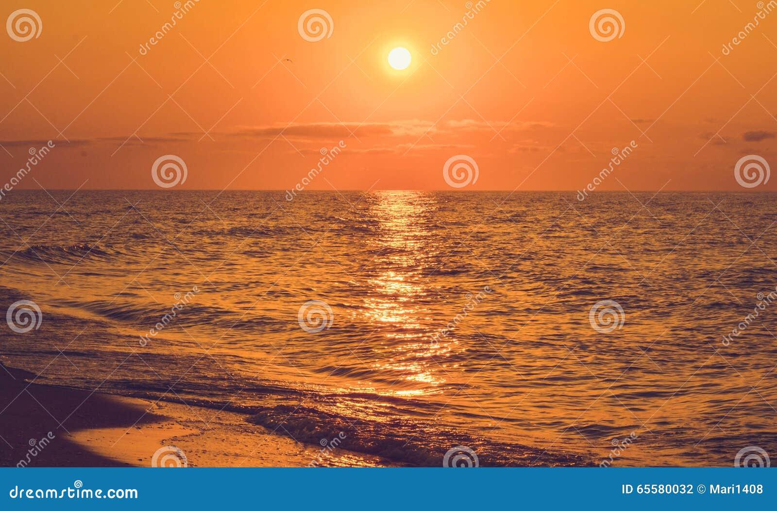 Paisagem do mar durante a calma com sol