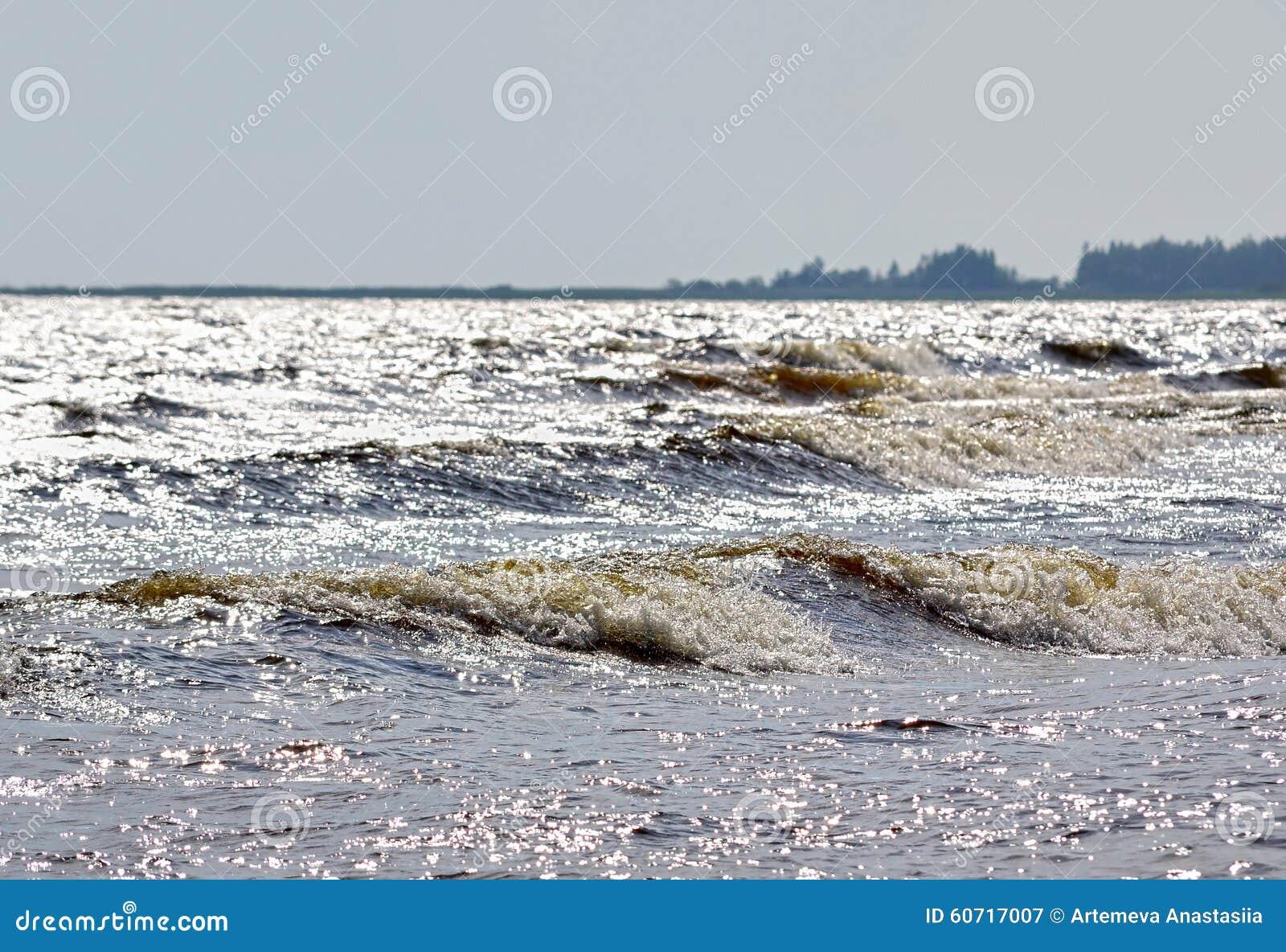 Paisagem do norte com floresta e Lago Ladoga