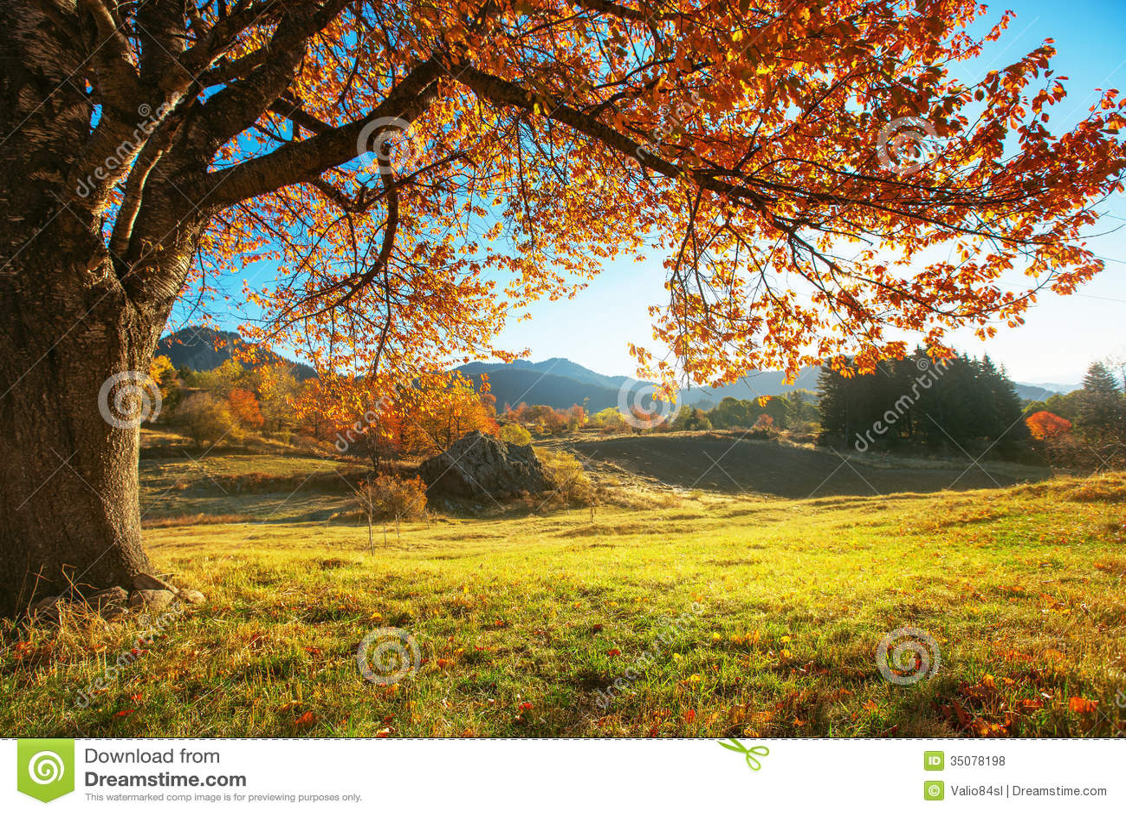 Paisagem do outono