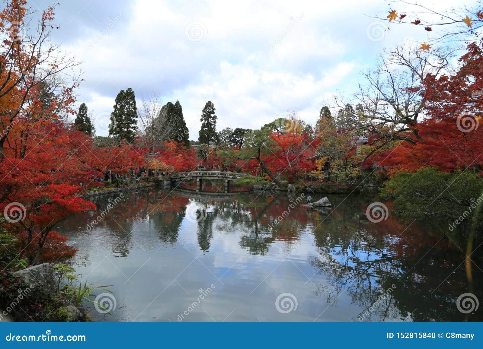 Paisagem do outono com lago e ?rvores
