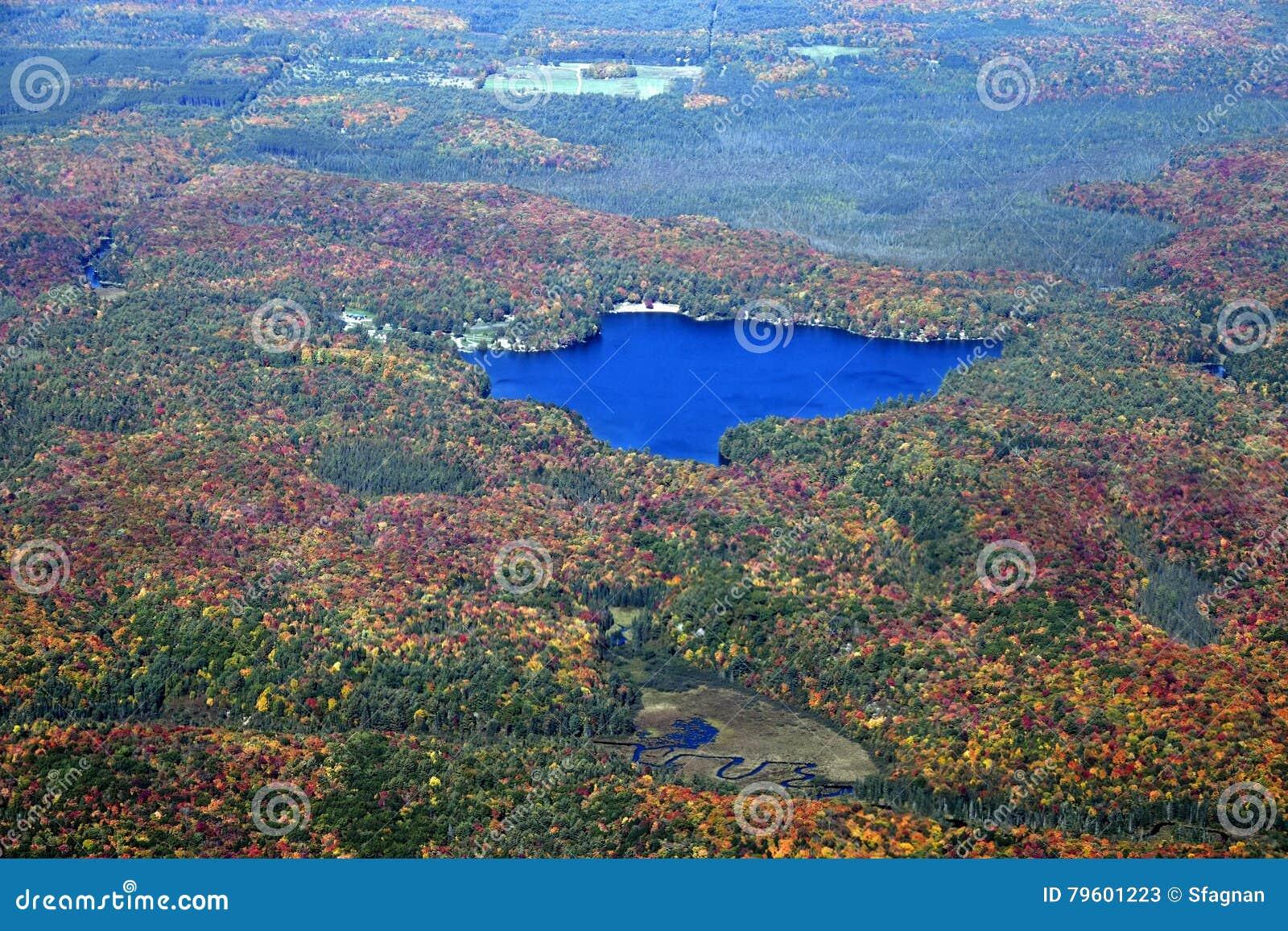 Paisagem do outono de Muskoka, aérea