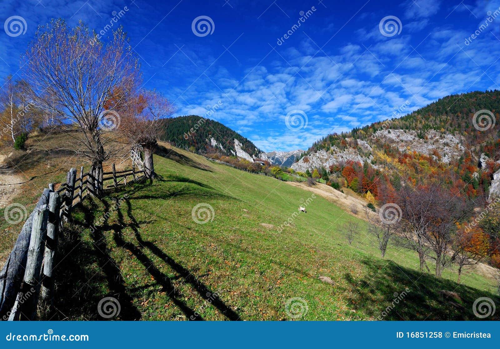 Paisagem do outono em montanhas Carpathian