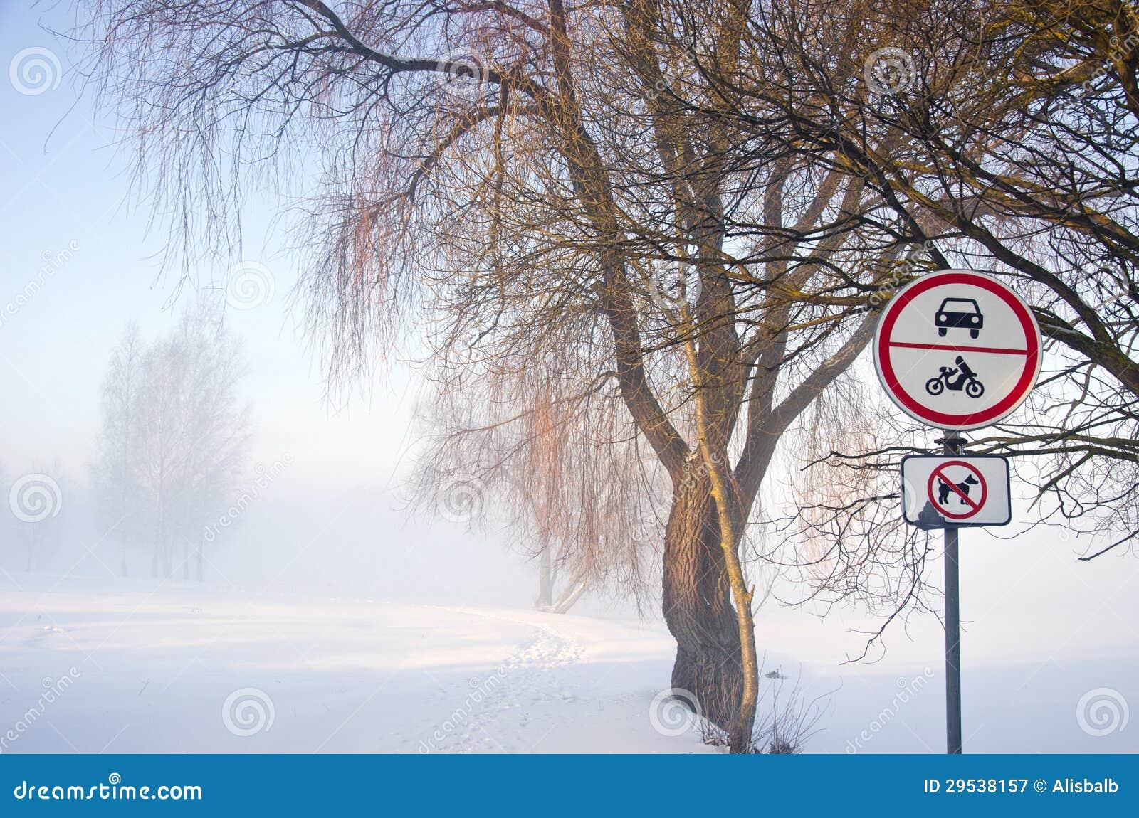 Paisagem do parque do inverno com sinal da névoa e de estrada