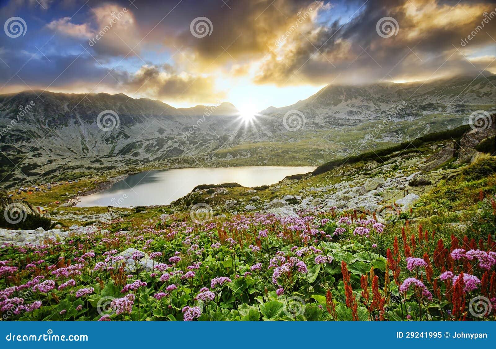 Download Paisagem Do Por Do Sol Da Montanha Imagem de Stock - Imagem de flor, noite: 29241995