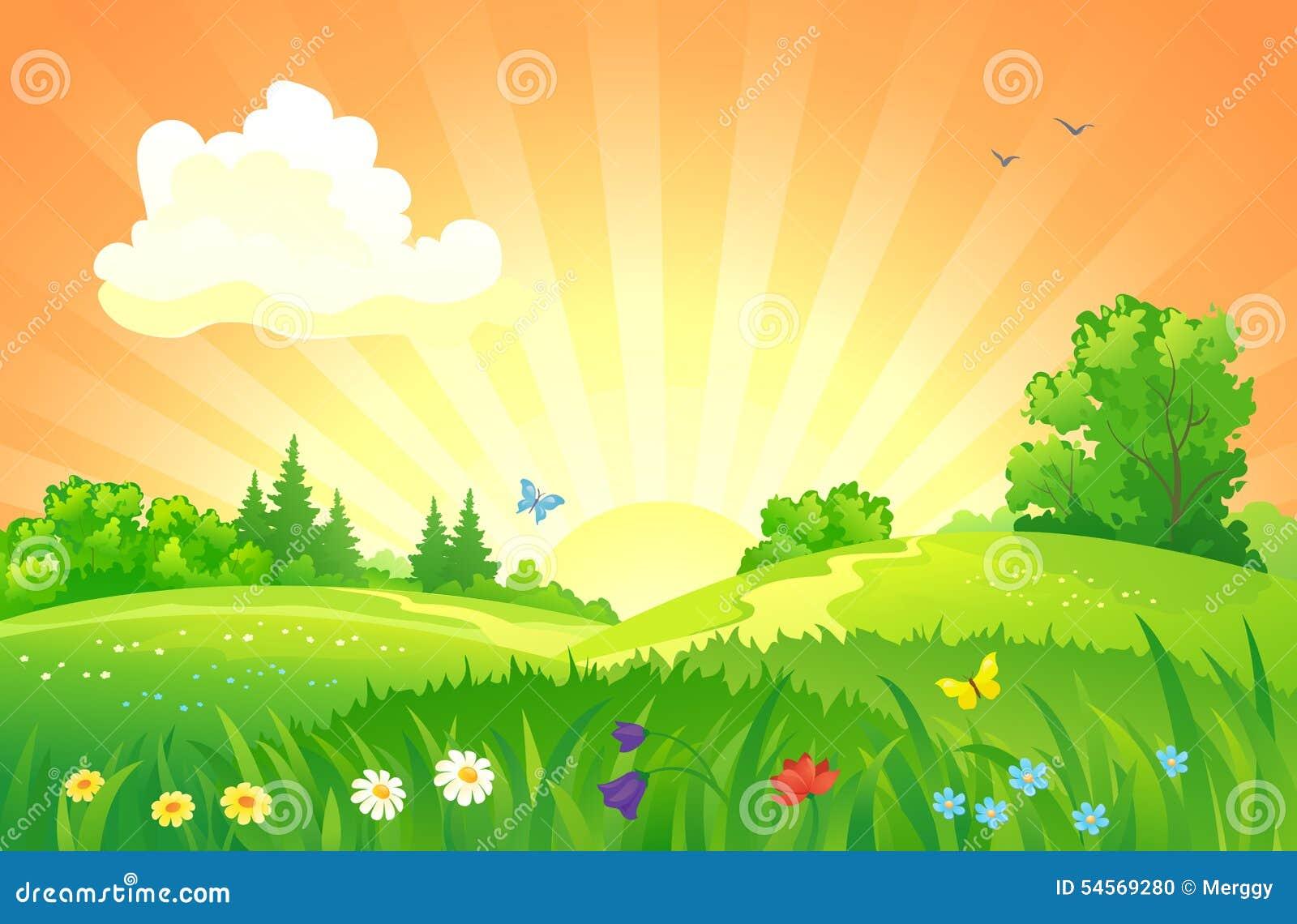 Paisagem do por do sol do verão