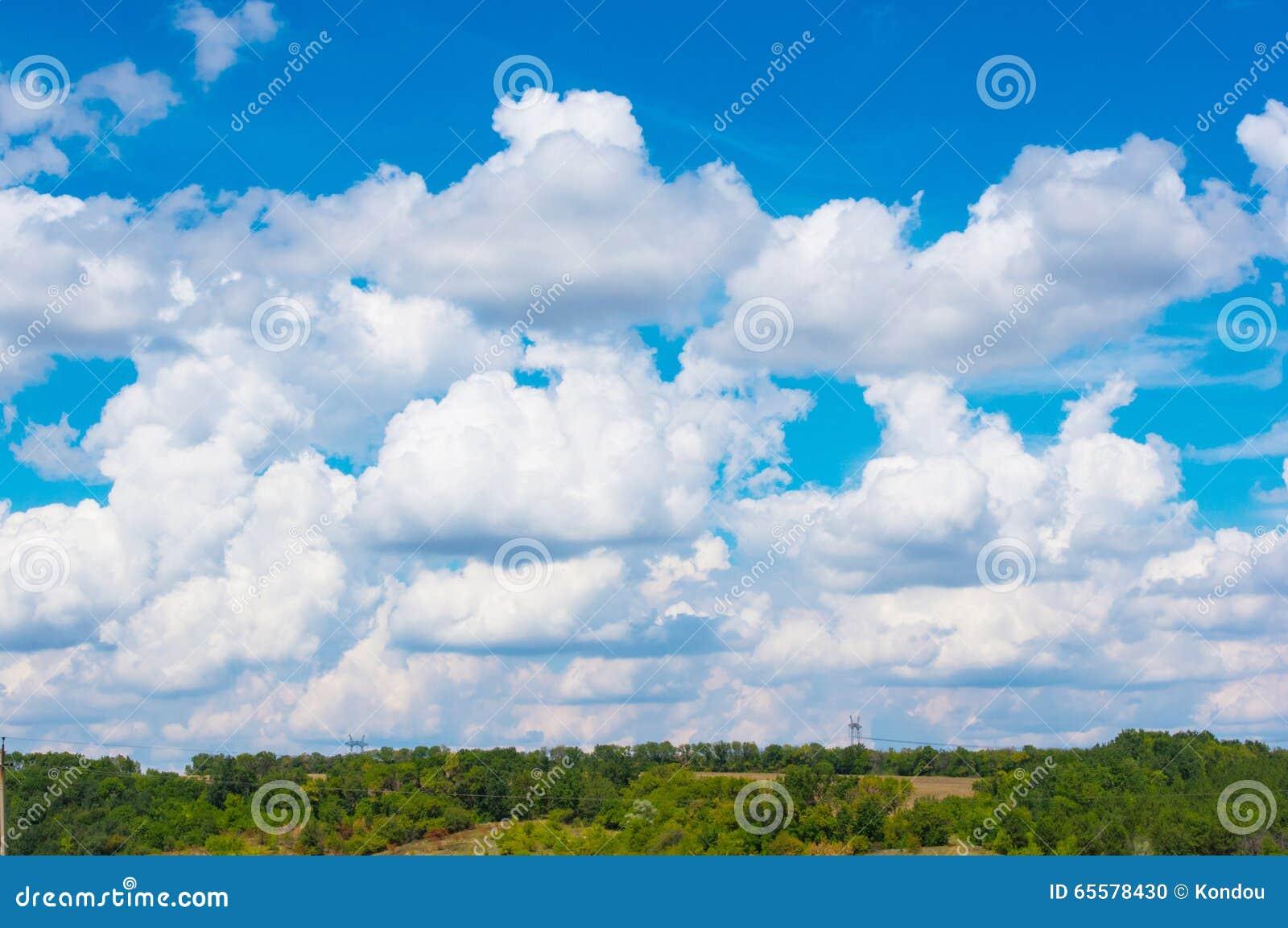 Paisagem do verão com grama verde e nuvens