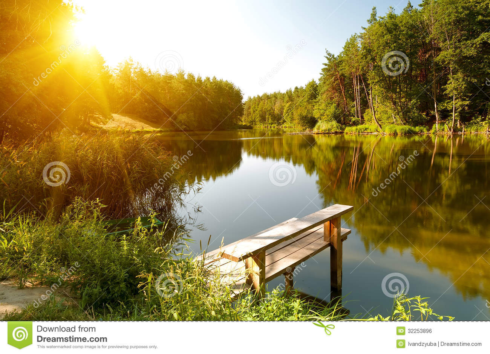 Paisagem do verão com lago da floresta