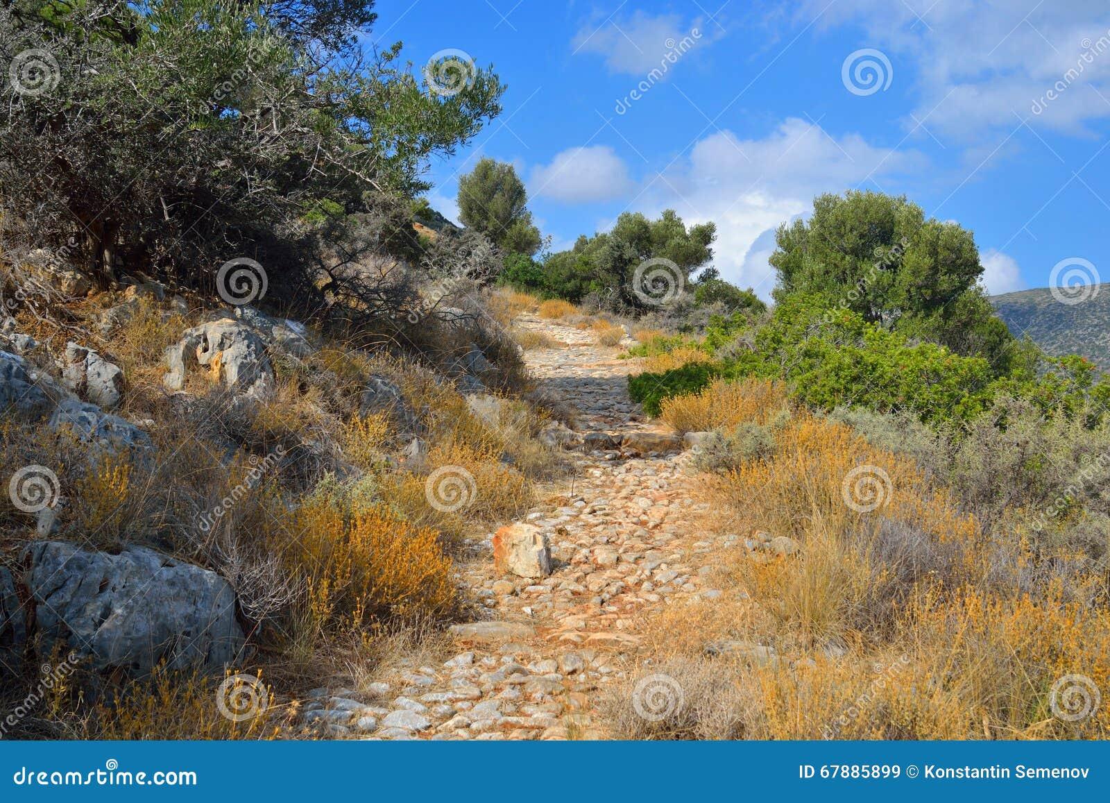 Paisagem do verão na Creta