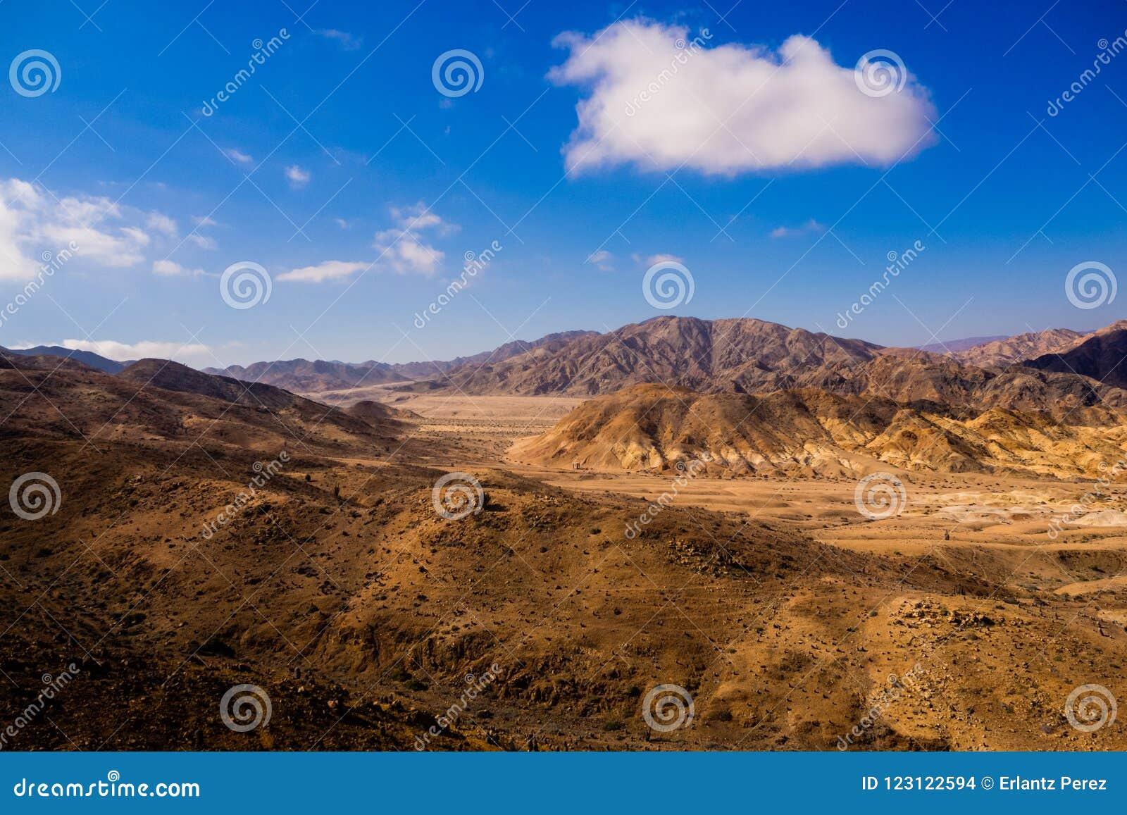 Paisagem em Pan de Azucar National Park no deserto de Atacama no Chile,