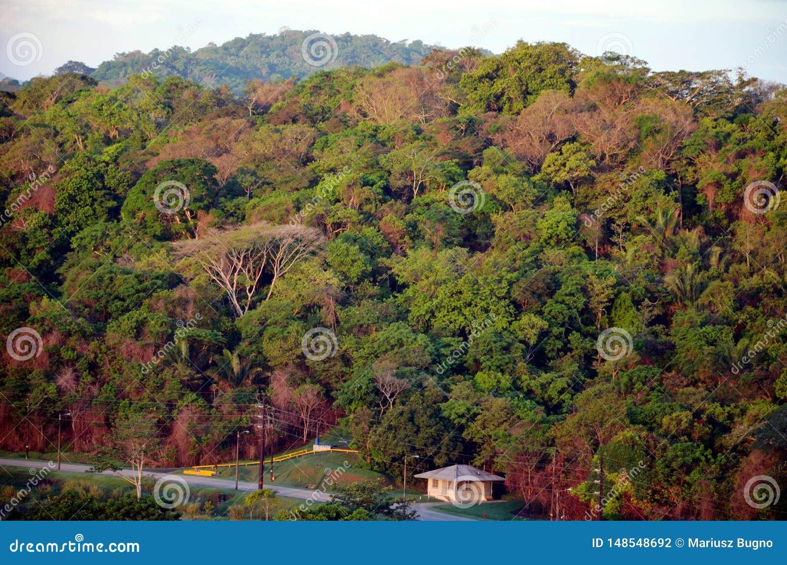 Paisagem em torno dos fechamentos de Cocoli, canal do Panam?