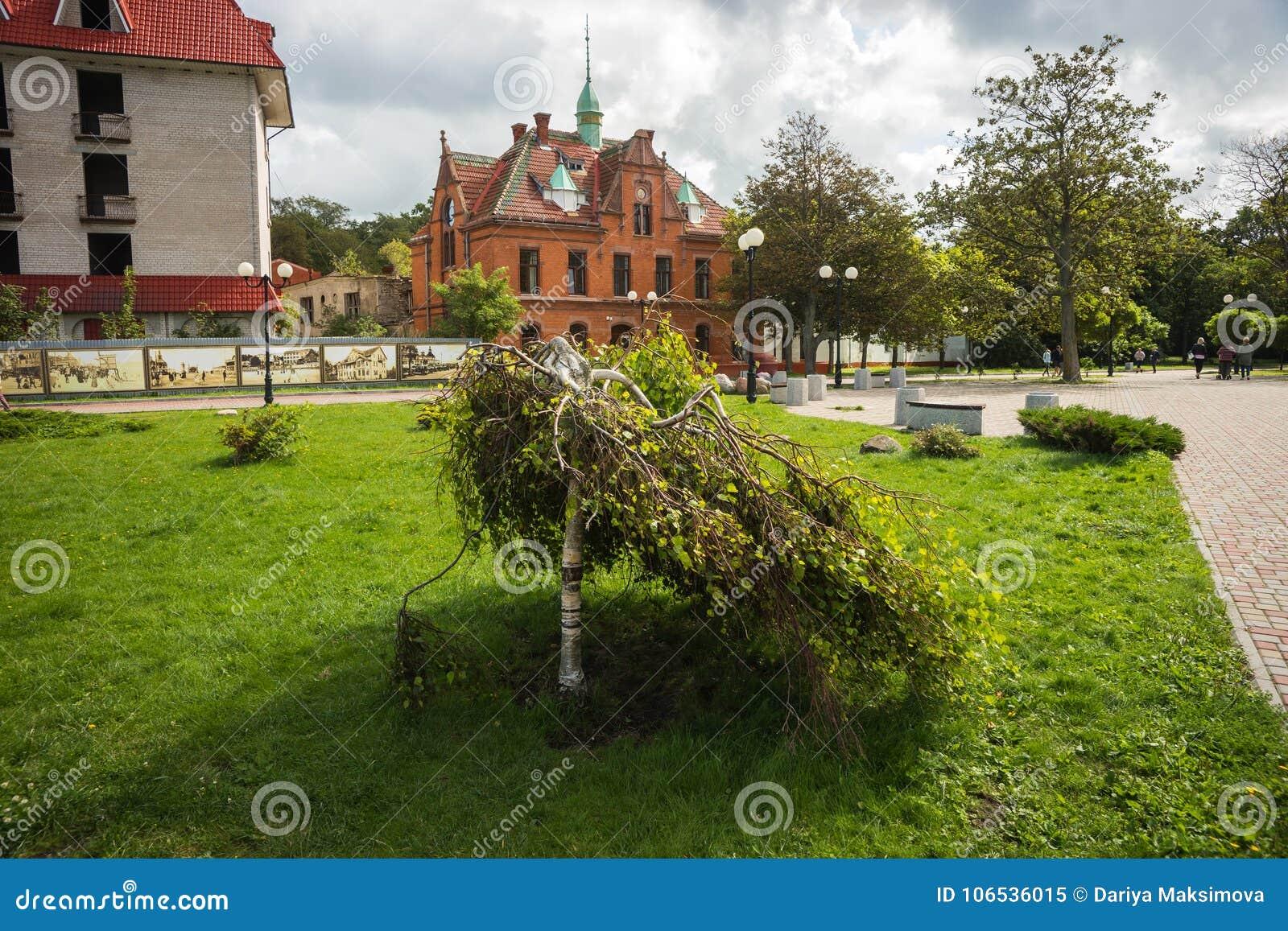 Paisagem em Zelenogradsk, região da cidade de Kaliningrad, Rússia