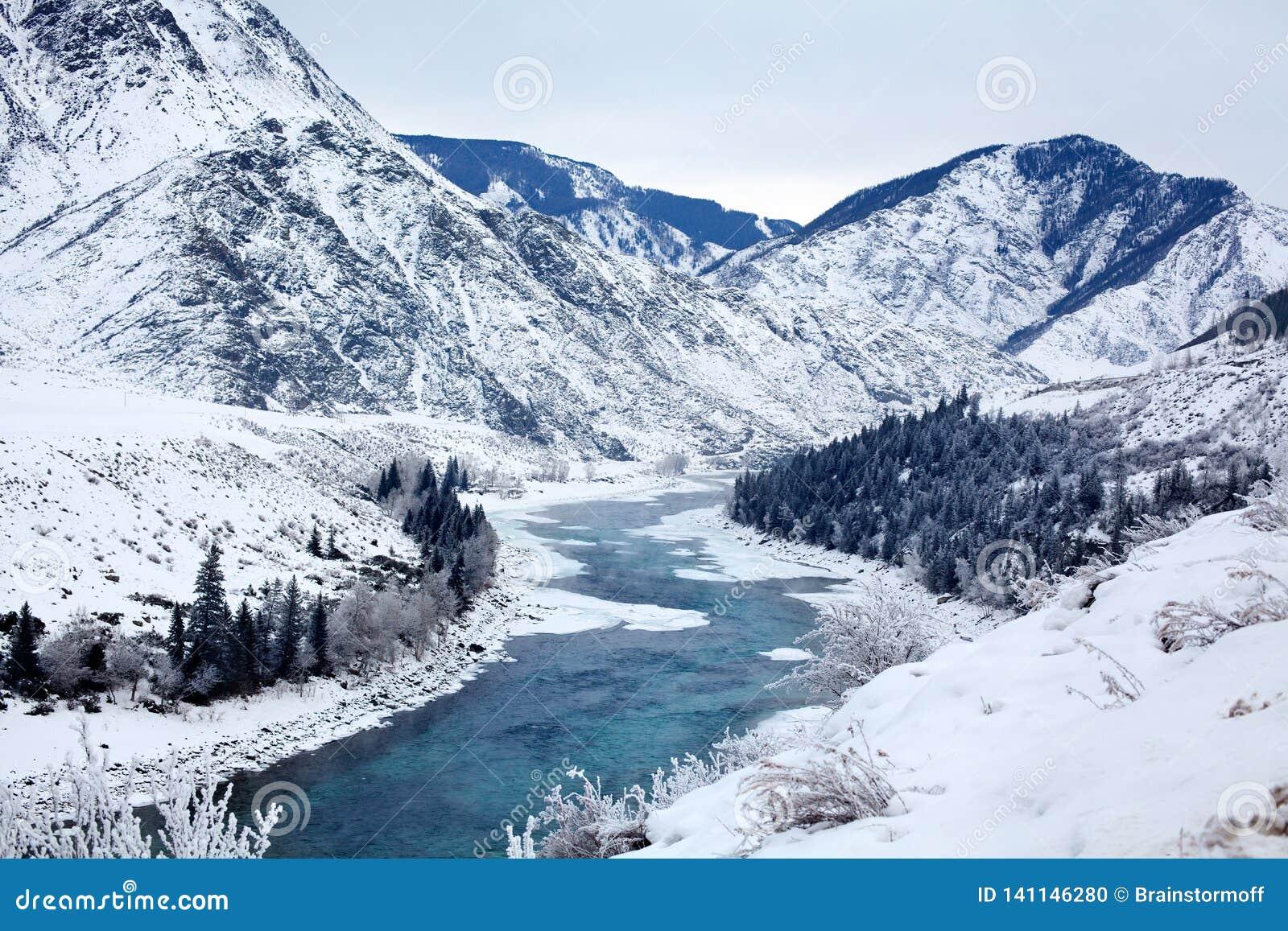 Paisagem excitante da montanha do inverno, corredor entre as inclinações de montanha, neve branca do rio de turquesa, floresta do