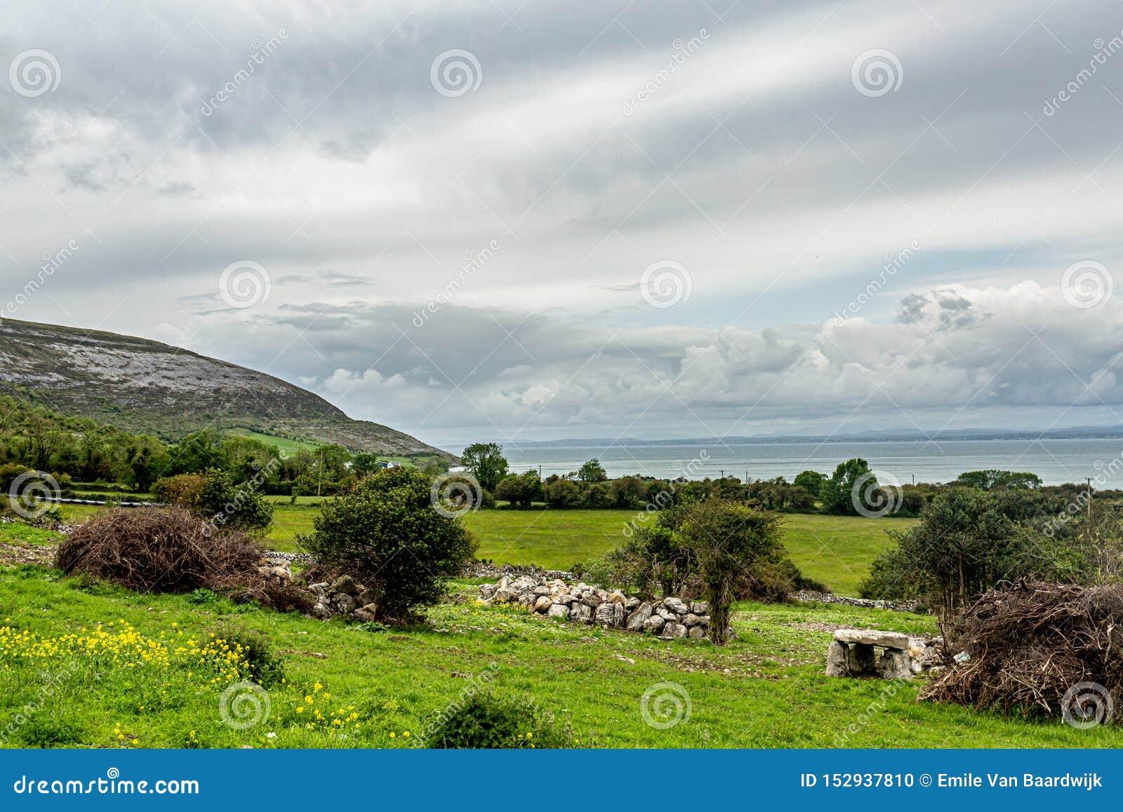 Paisagem irlandesa dos prados e das explorações agrícolas com o mar no fundo