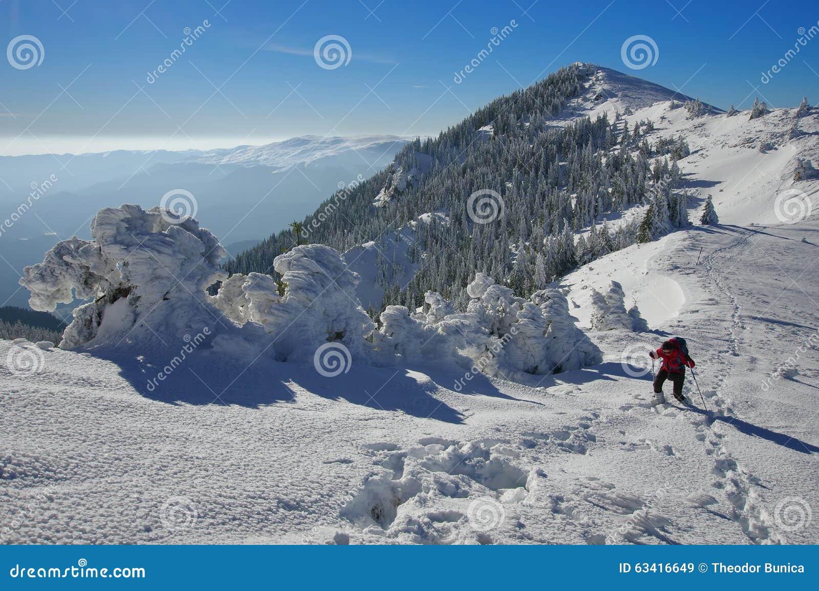 Paisagem montanhosa do inverno